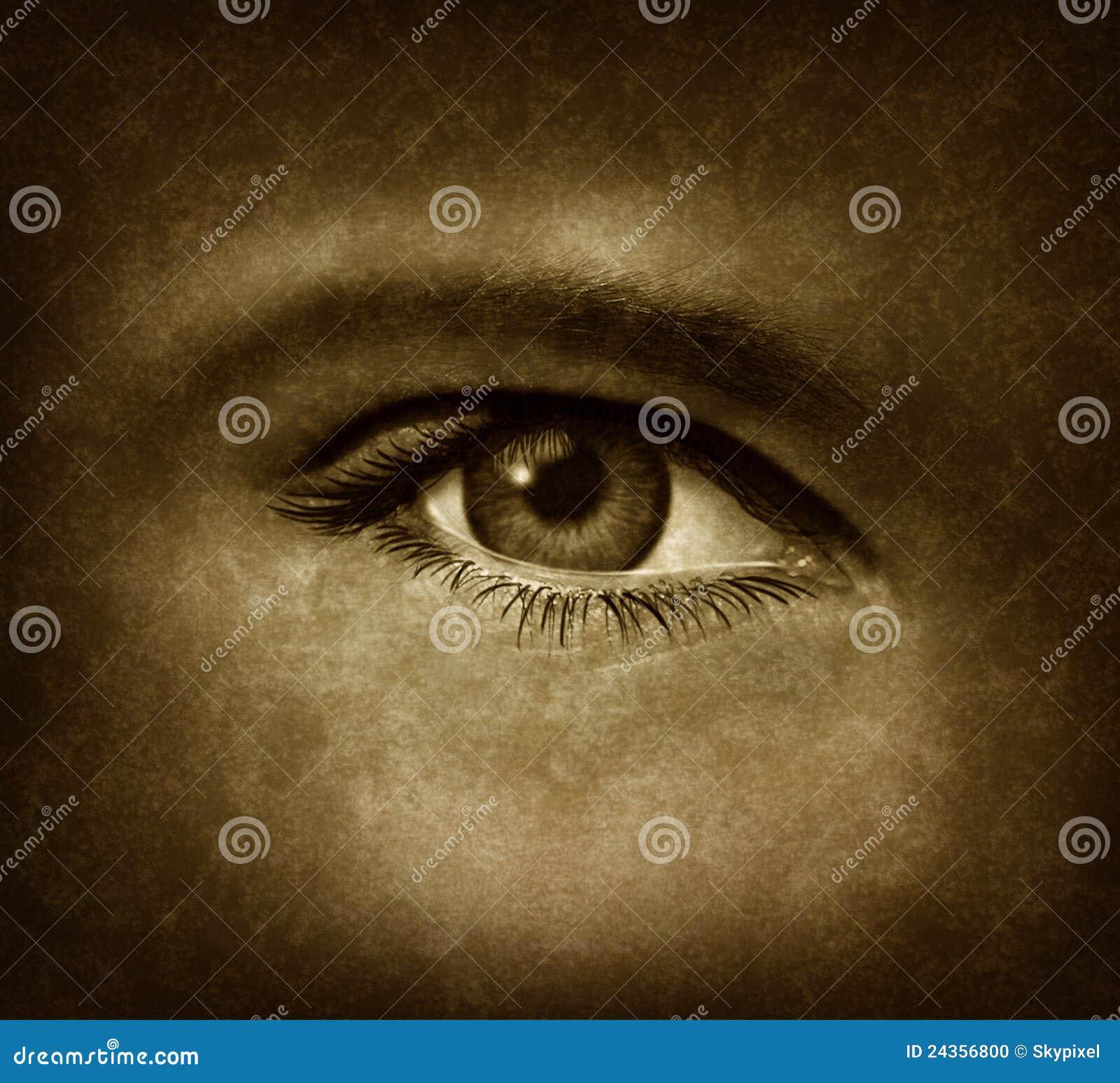 human sight essay