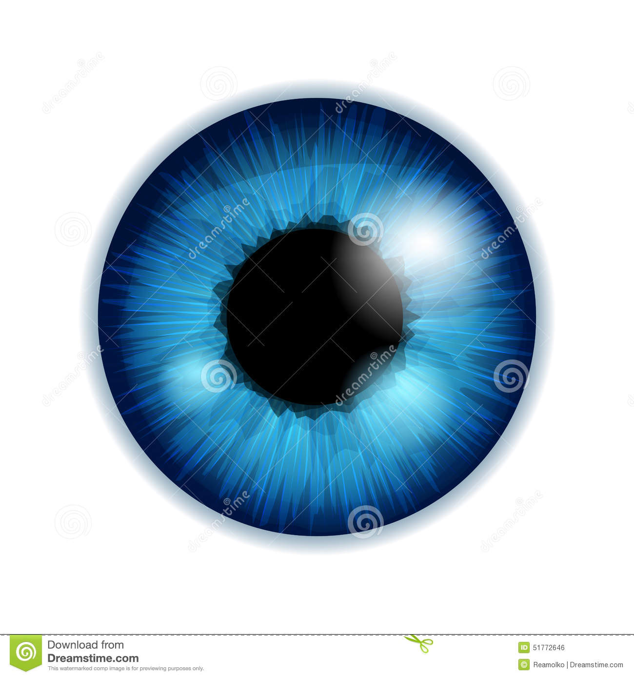 human eye iris pupil blue color stock vector