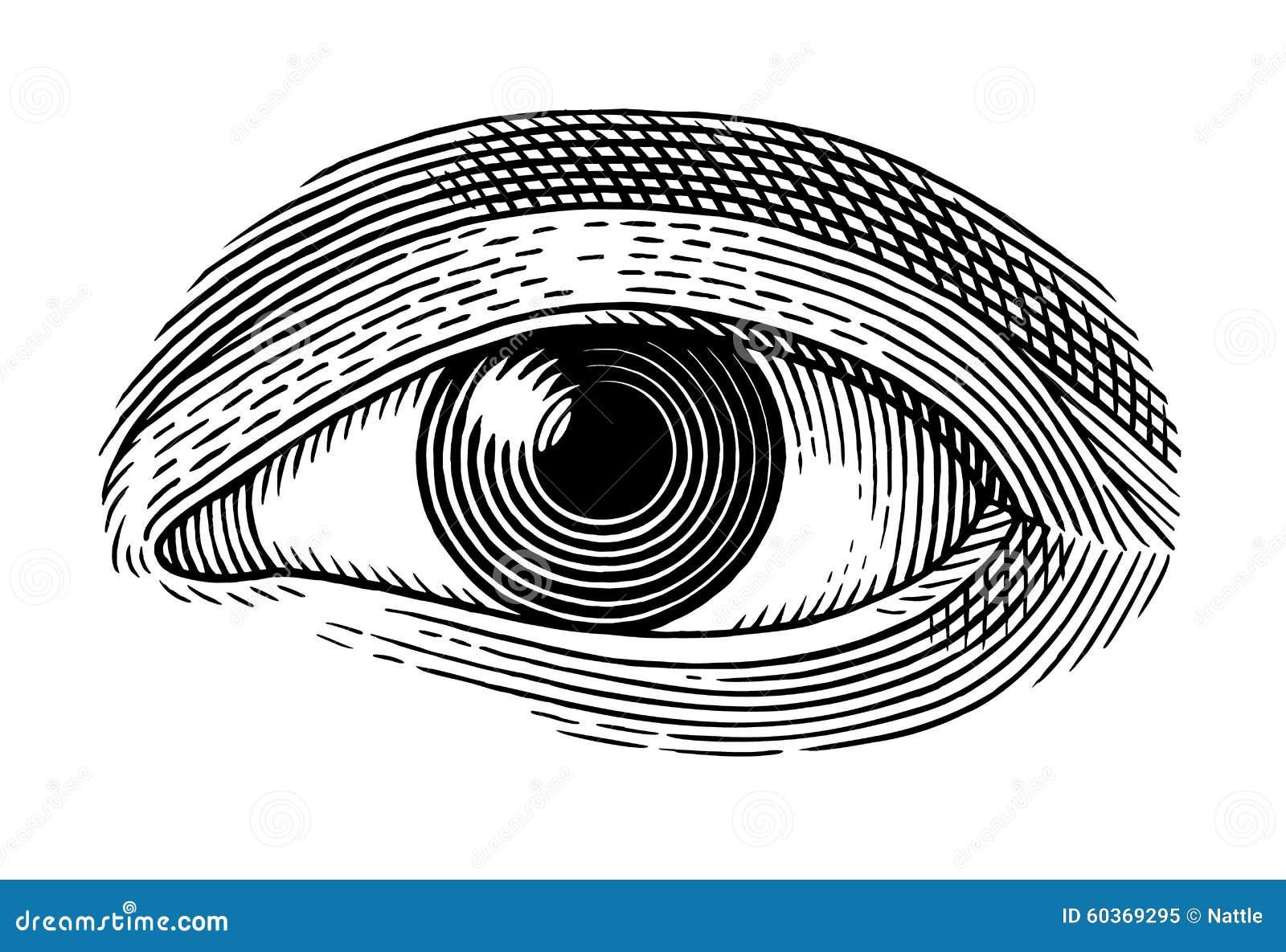 Human eye
