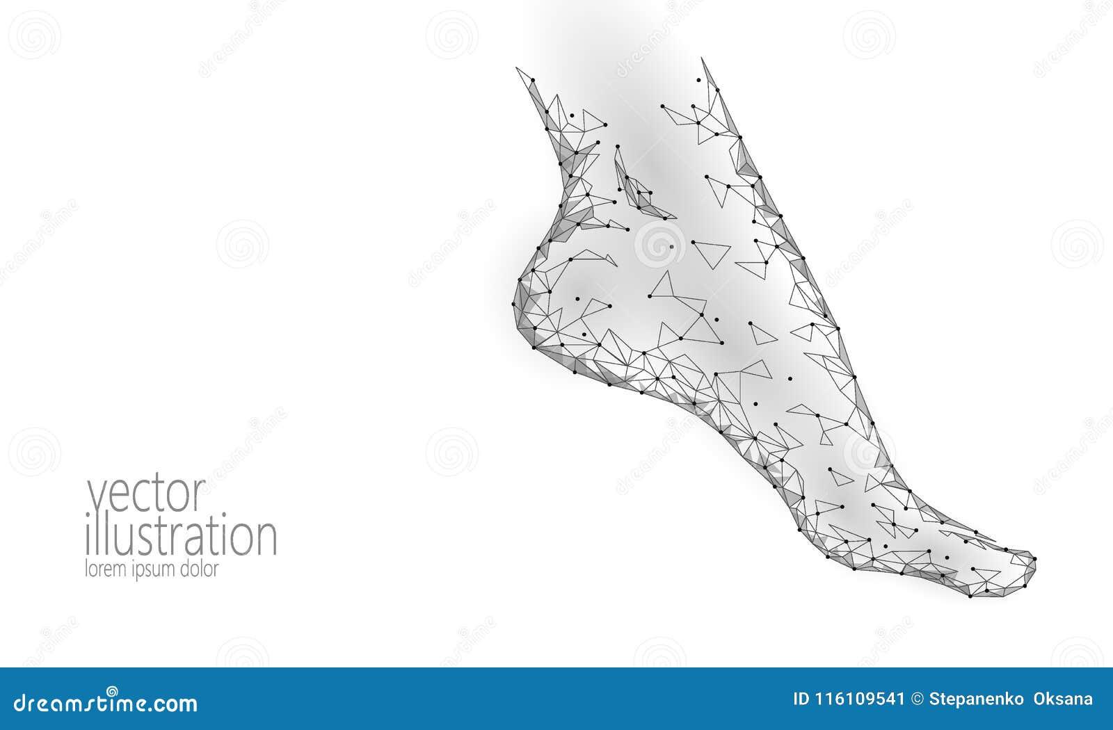 Human Feet Toe 3D Low Poly Render. Polygonal Gray White Monochrome ...