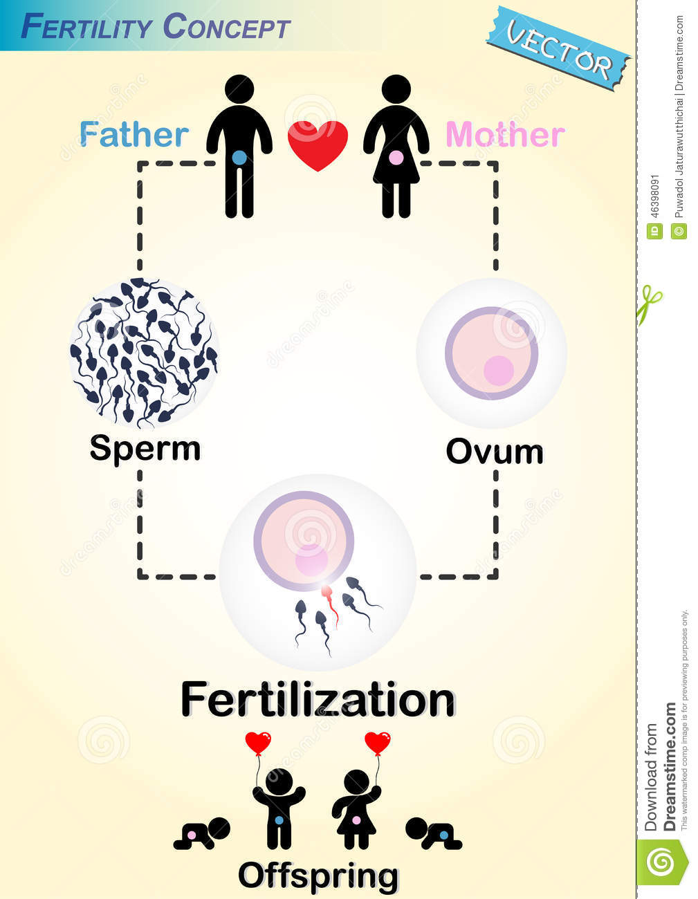 man and sperm