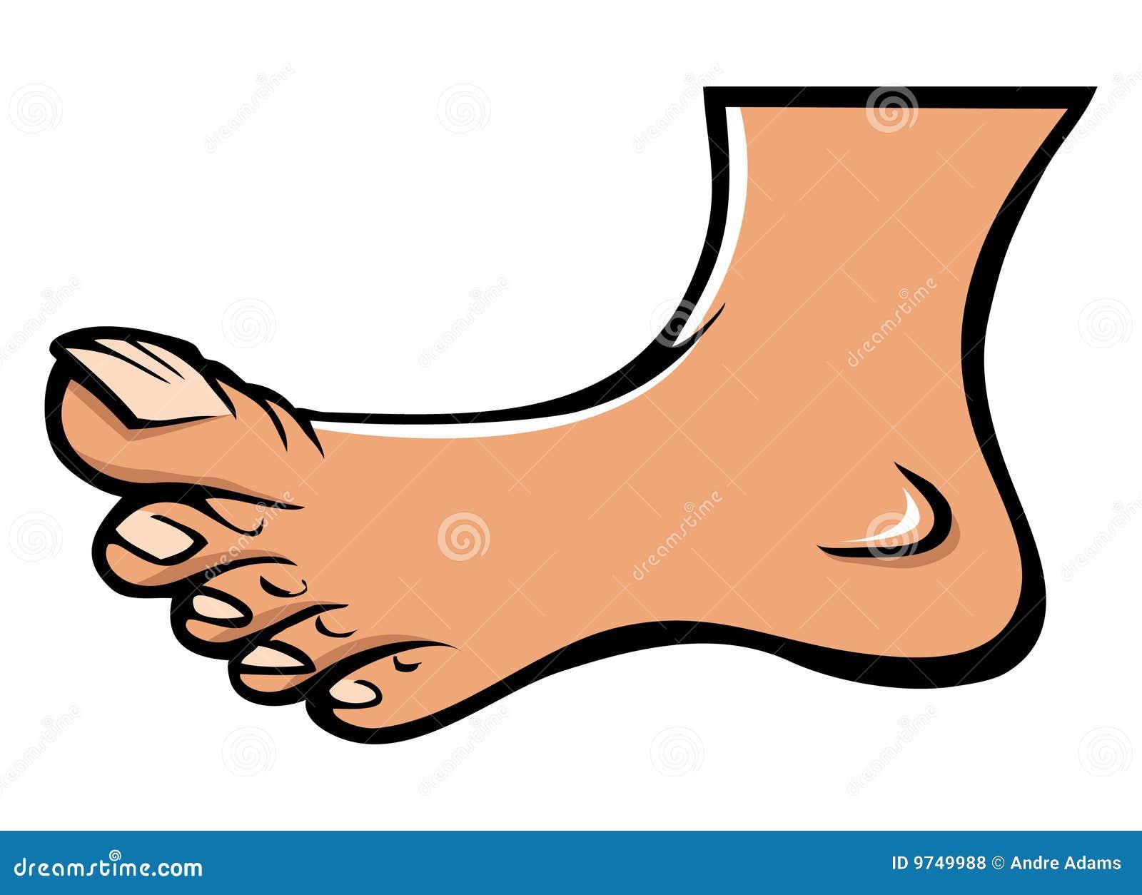 Human Foot Stock Vector Illustration Of Toenails Science