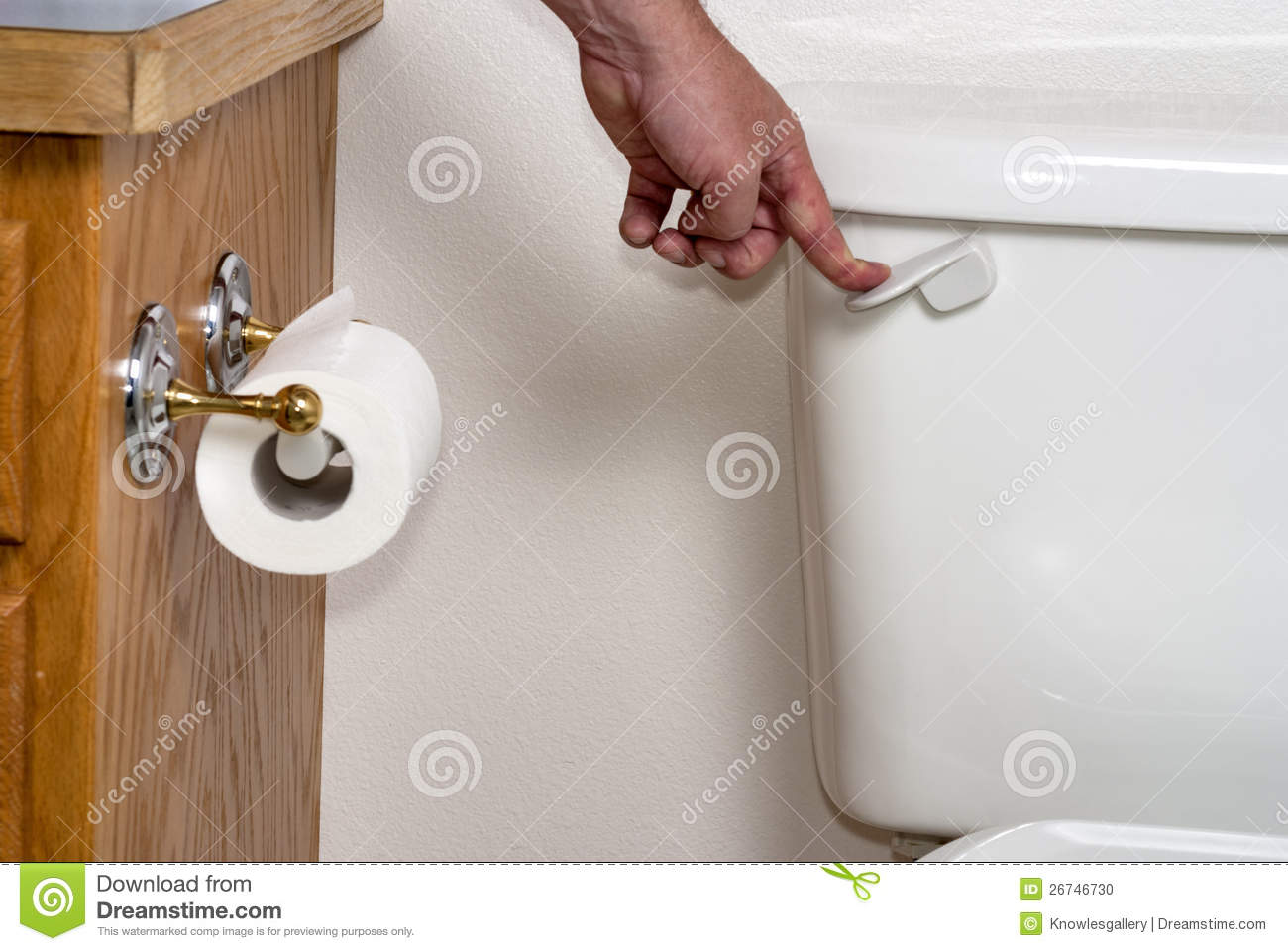 Human Hand Flushing A Toilet Stock Photo - Image of bath, hygiene ...