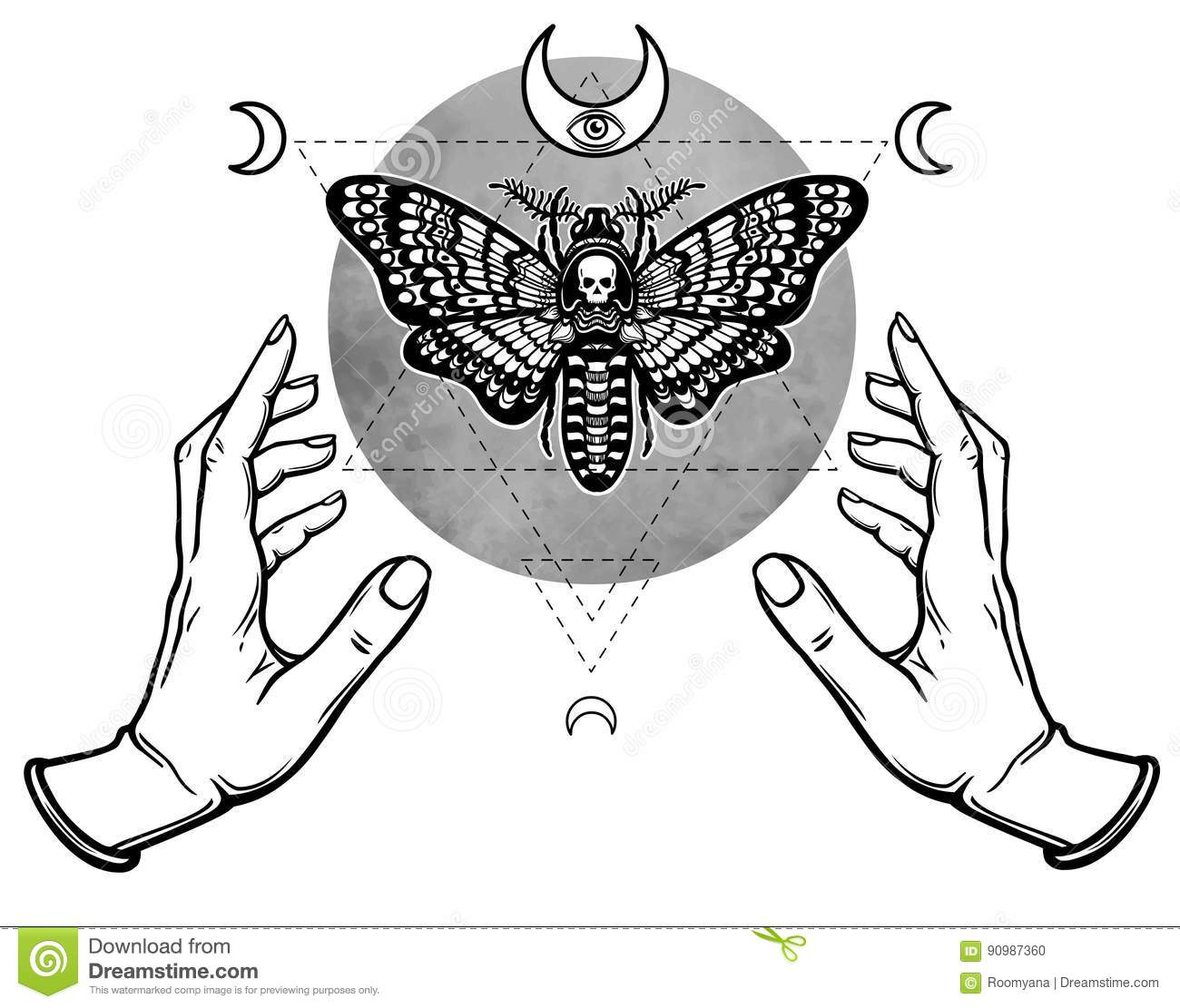 Human Hands Hold A Moth The Dead Head Stock Vector Illustration