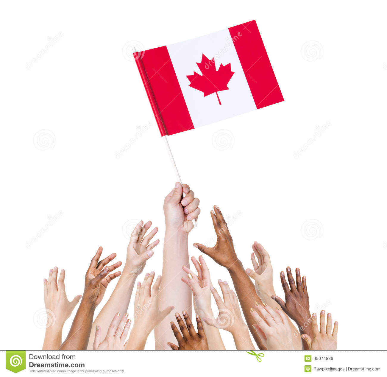 human hands holding canada flag stock photo image 45074886