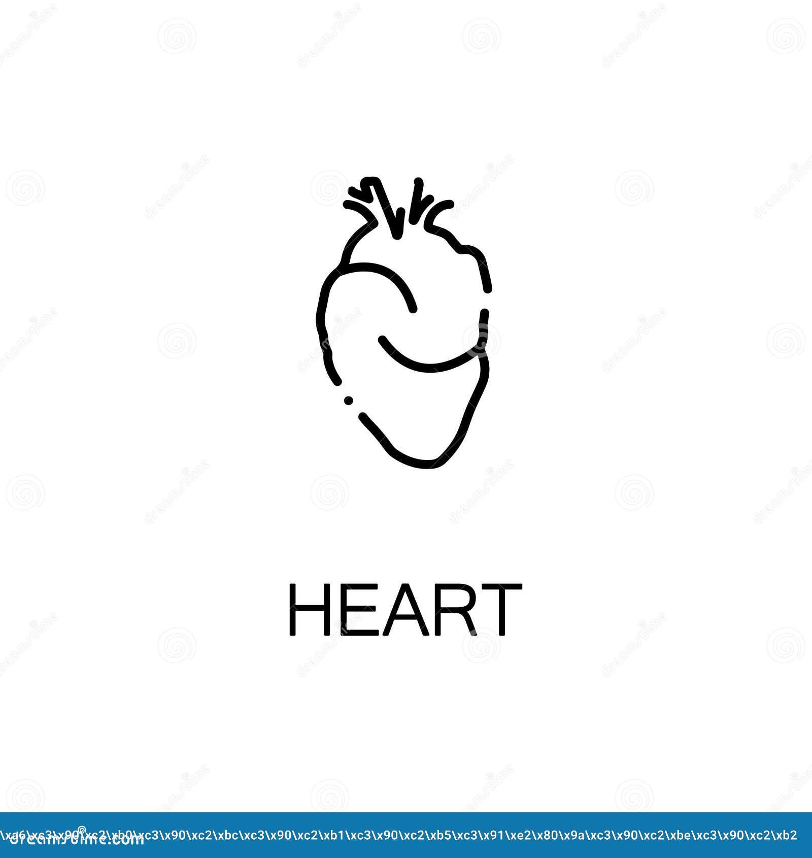 Human heart icon stock vector  Illustration of body, heart