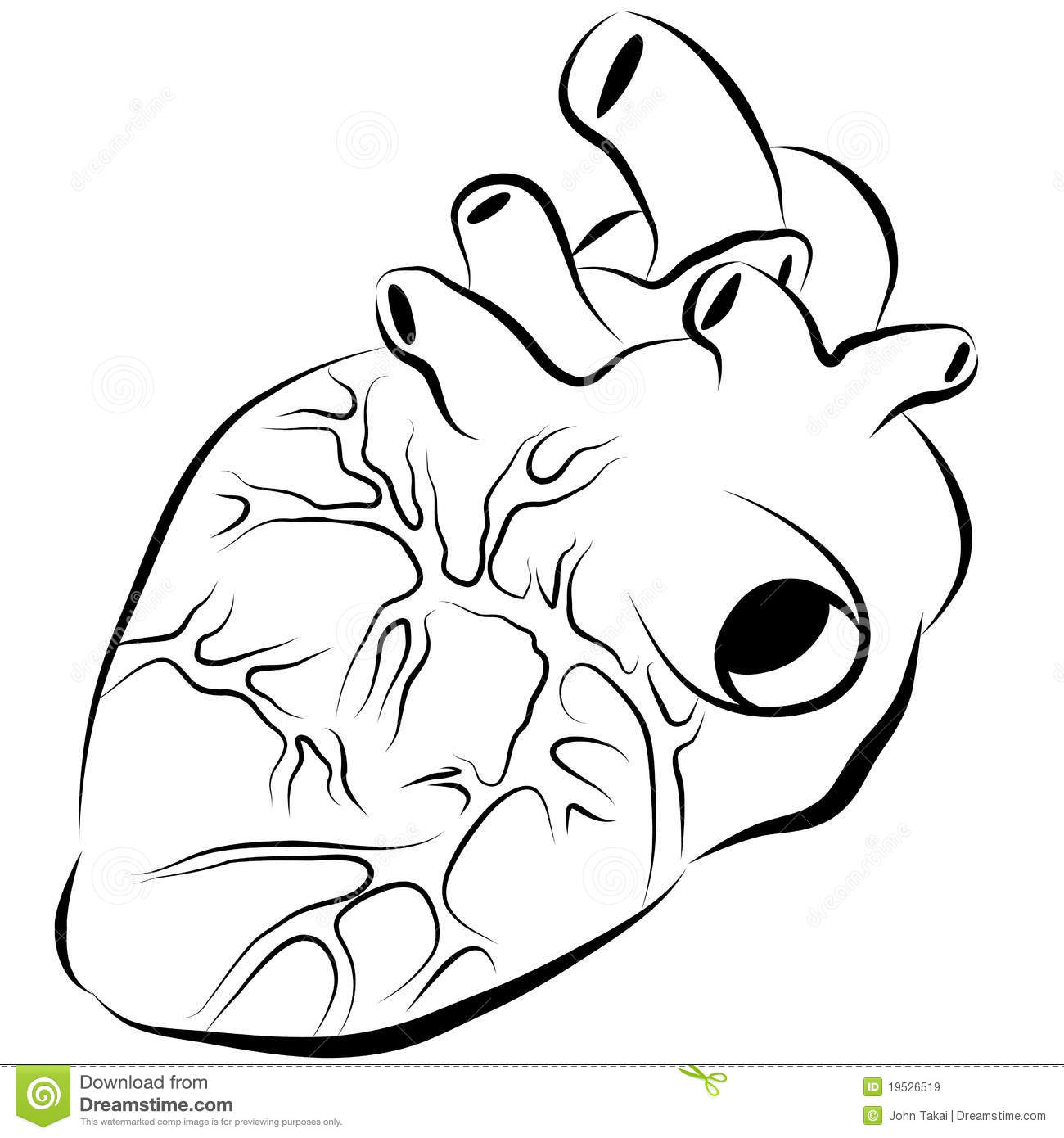 human heart ink drawing royalty free stock images image 19526519