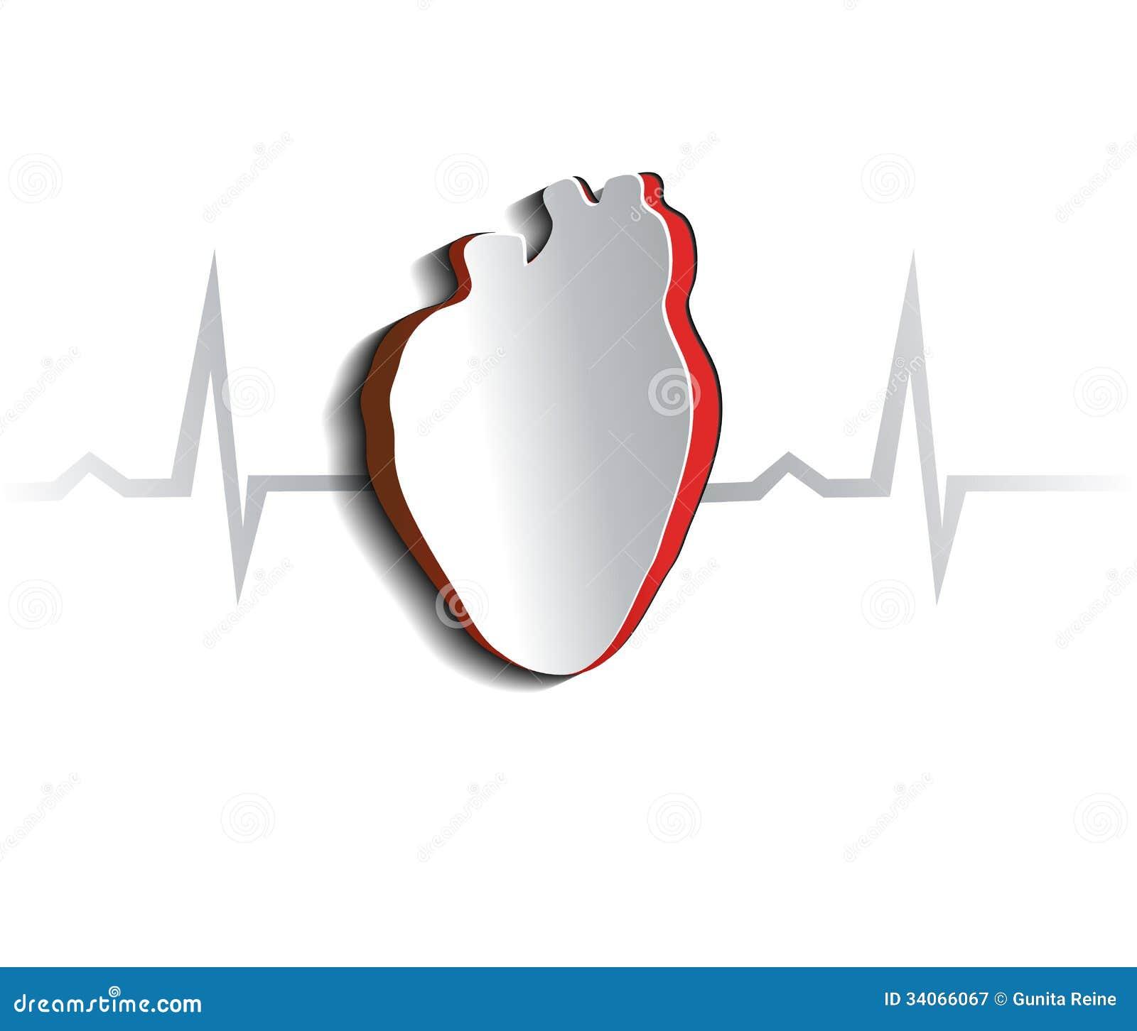 Printable Human Heart