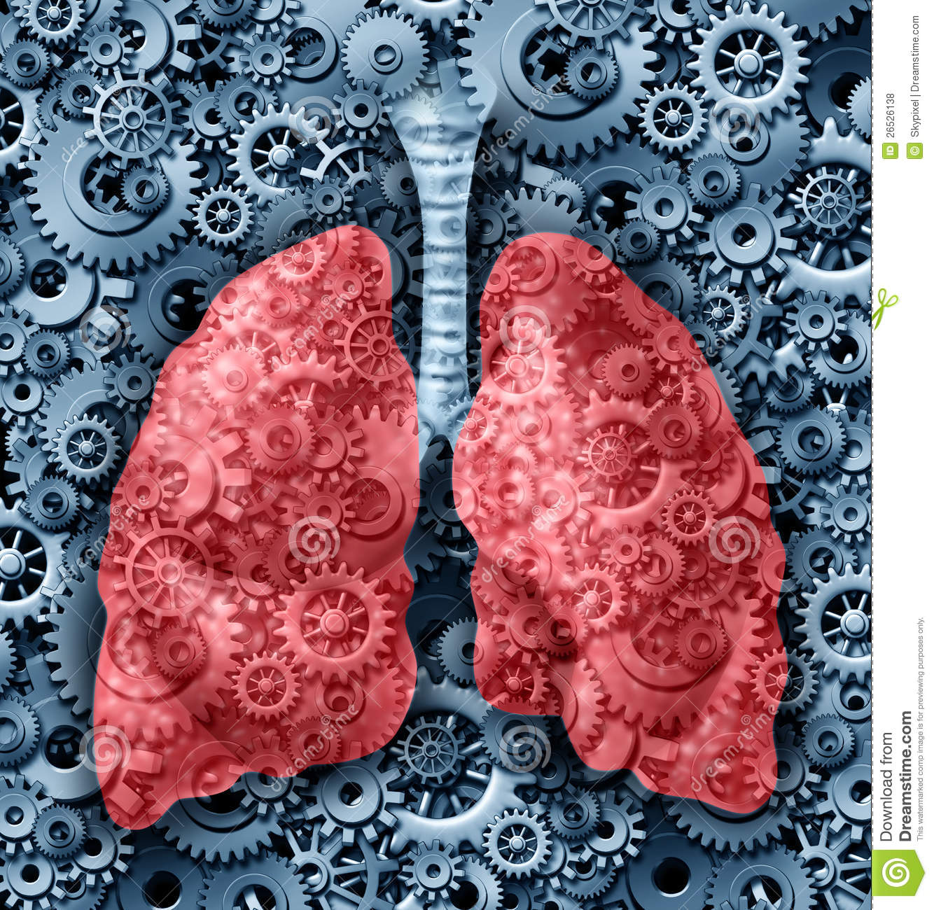 Human Lungs Function Stock Illustration Illustration Of Asthmatic