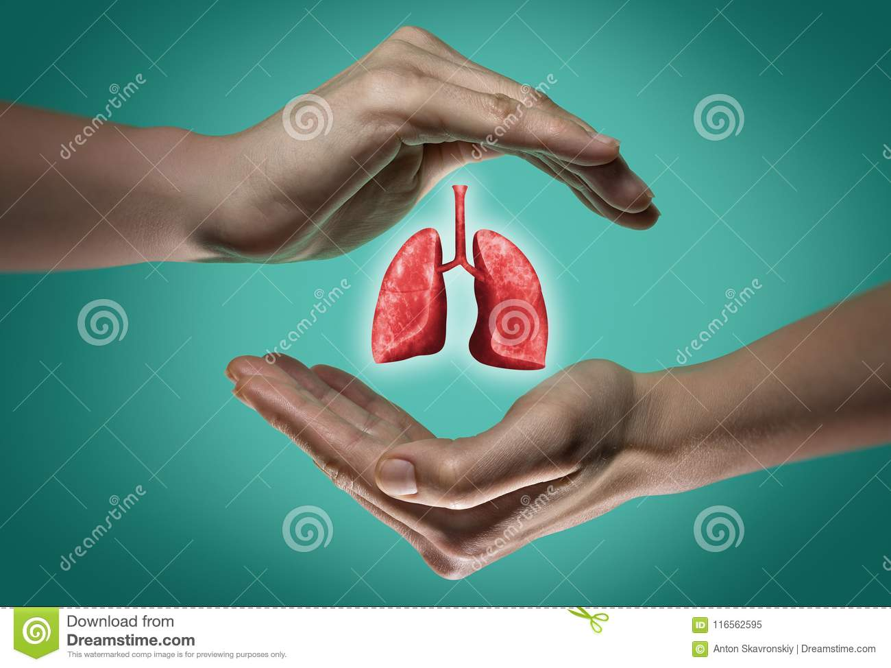 The concept of a healthy lungs.