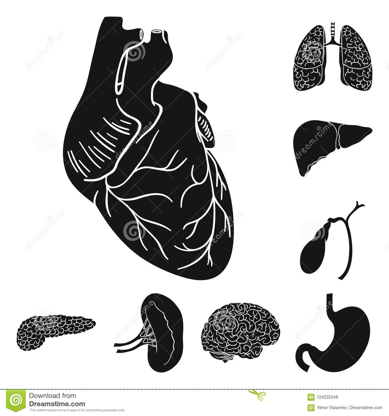 Human Organs Black Icons In Set Collection For Design. Anatomy And ...