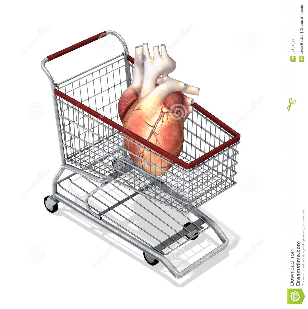 should human organs for sale Read this essay on the sale of human organs come browse our large digital warehouse of free sample essays get the knowledge you need in order to pass your classes and more.