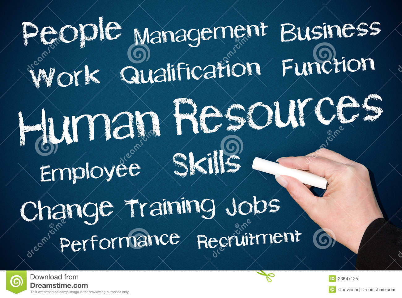 Human Resources your essay writer