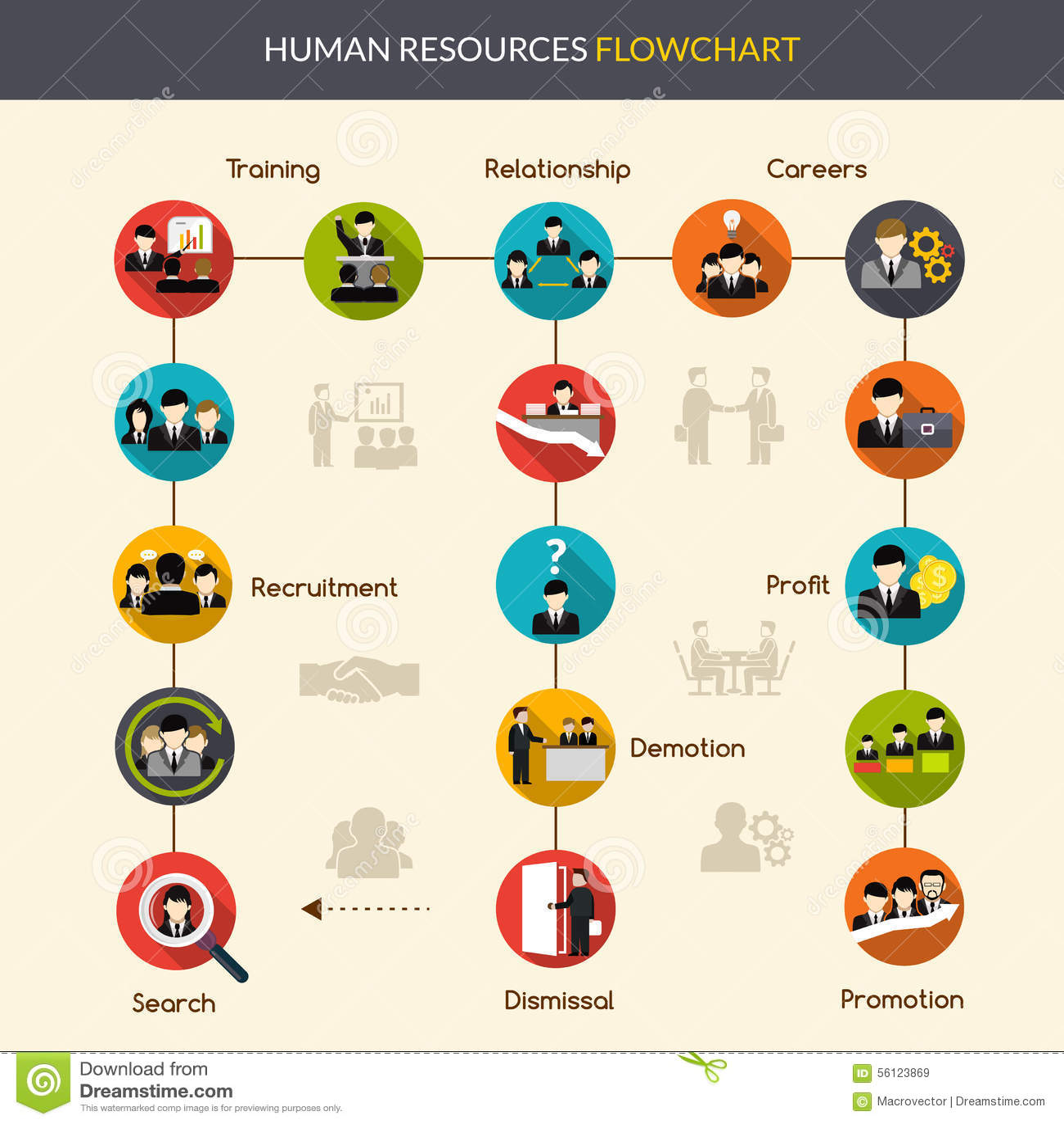Human Resources Flowchart Stock Vector Illustration Of Corporate