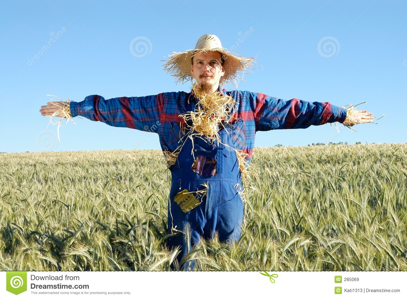 http://thumbs.dreamstime.com/z/human-scarecrow-285069.jpg