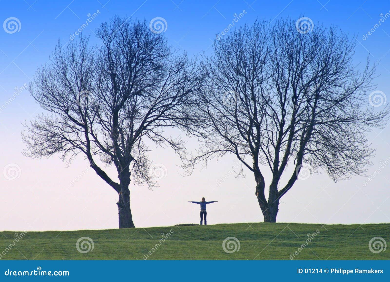 Human shape and trees