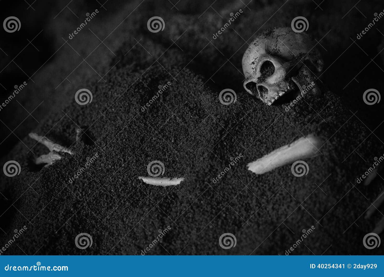 Human Skeleton - Black and white