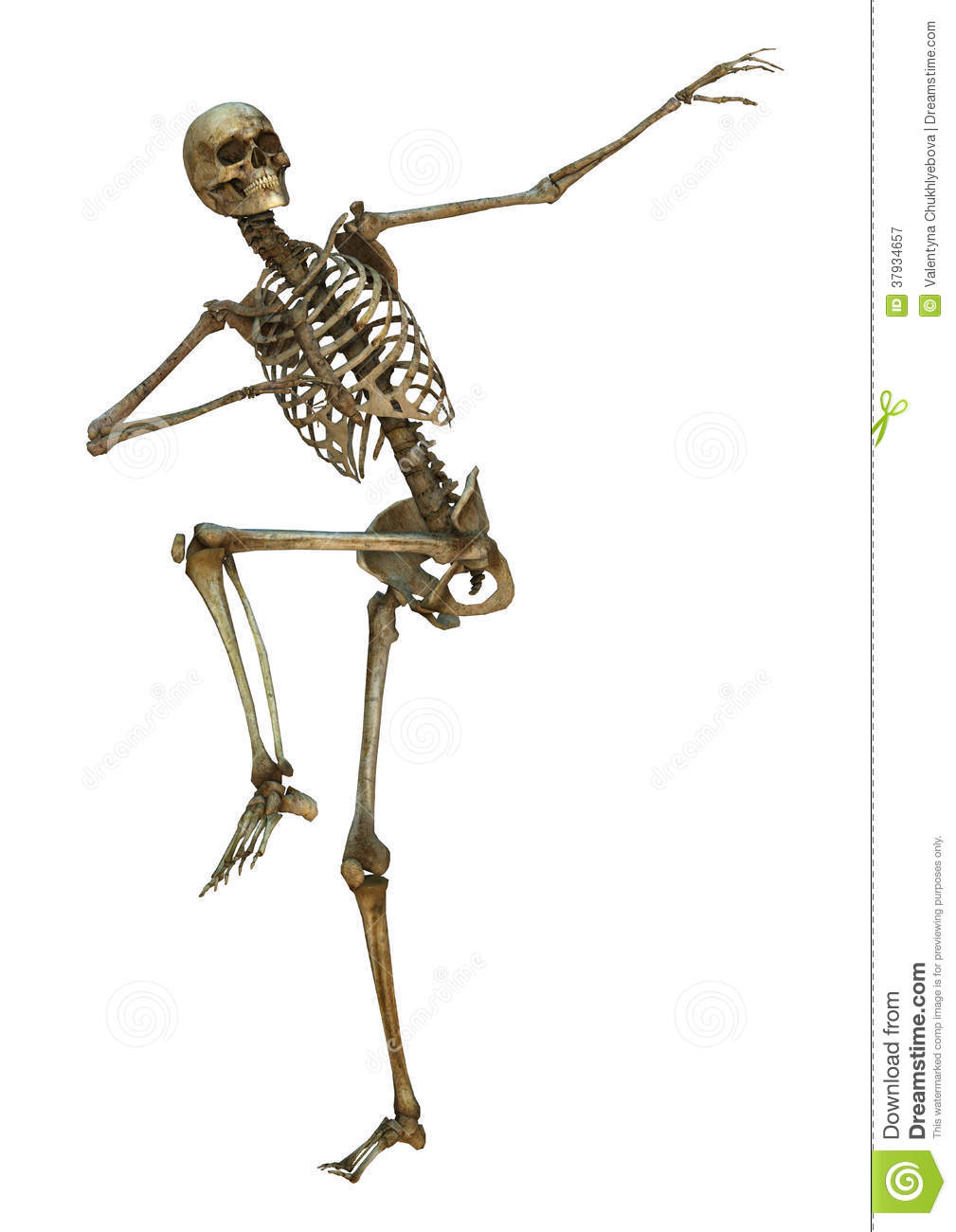 human skeleton royalty free stock photography image people dancing clip art images Black People Dancing Clip Art