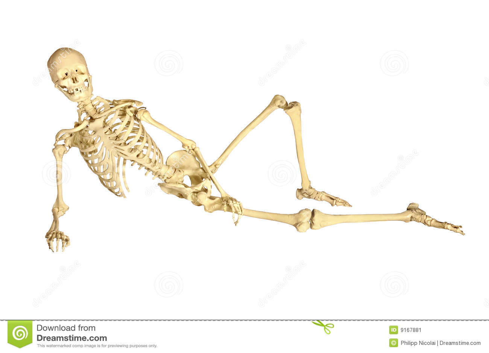 Секс с скелетами 16 фотография