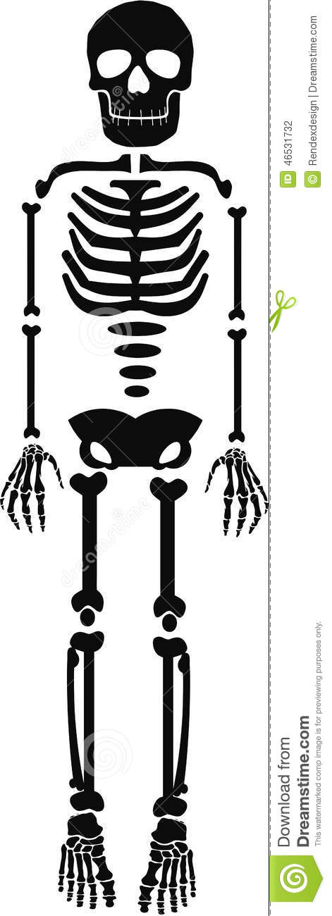 background halloween human isolated skeleton template - Halloween Skeleton Template