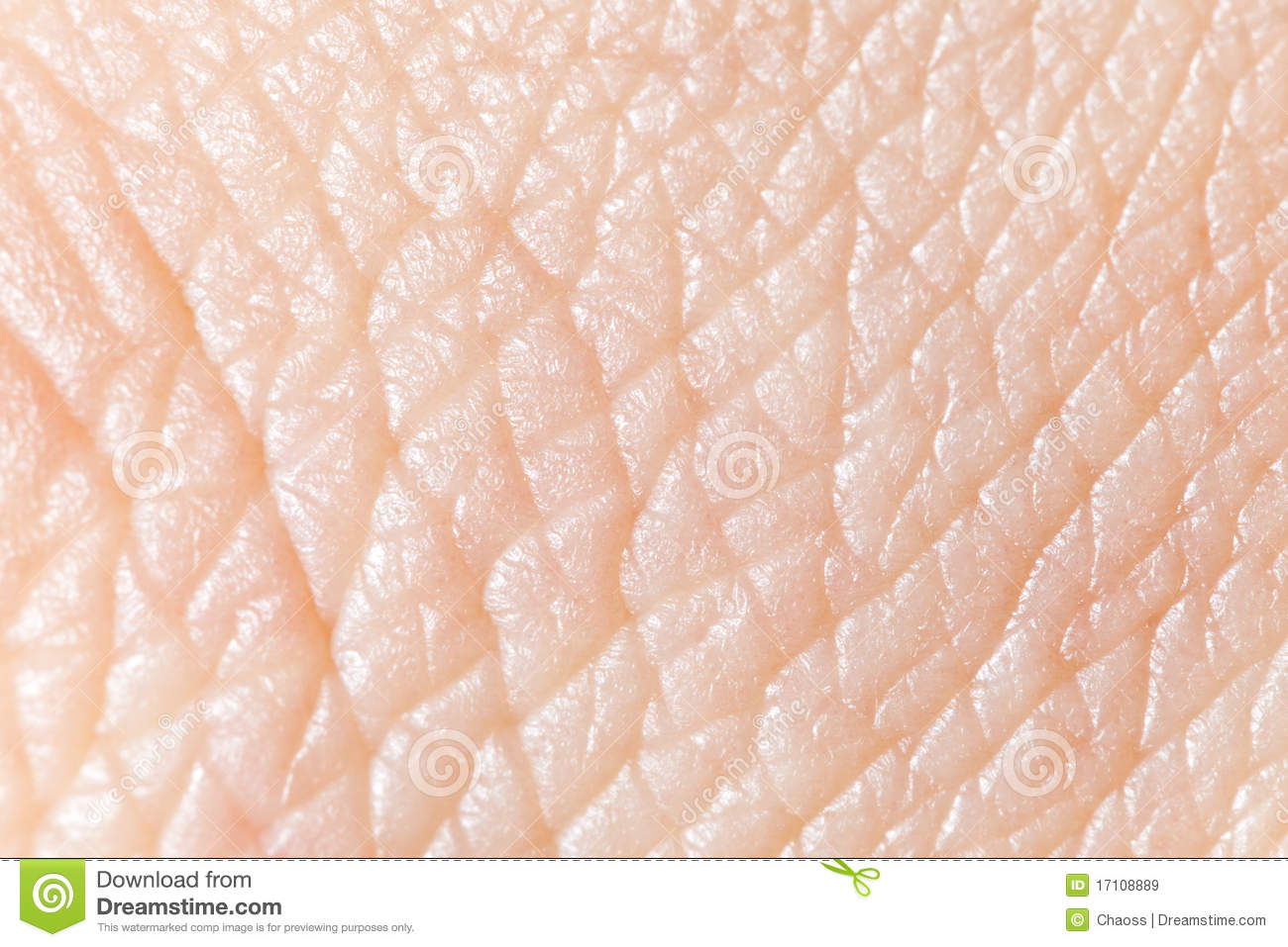 human skin stock image image of closeup abstract. Black Bedroom Furniture Sets. Home Design Ideas