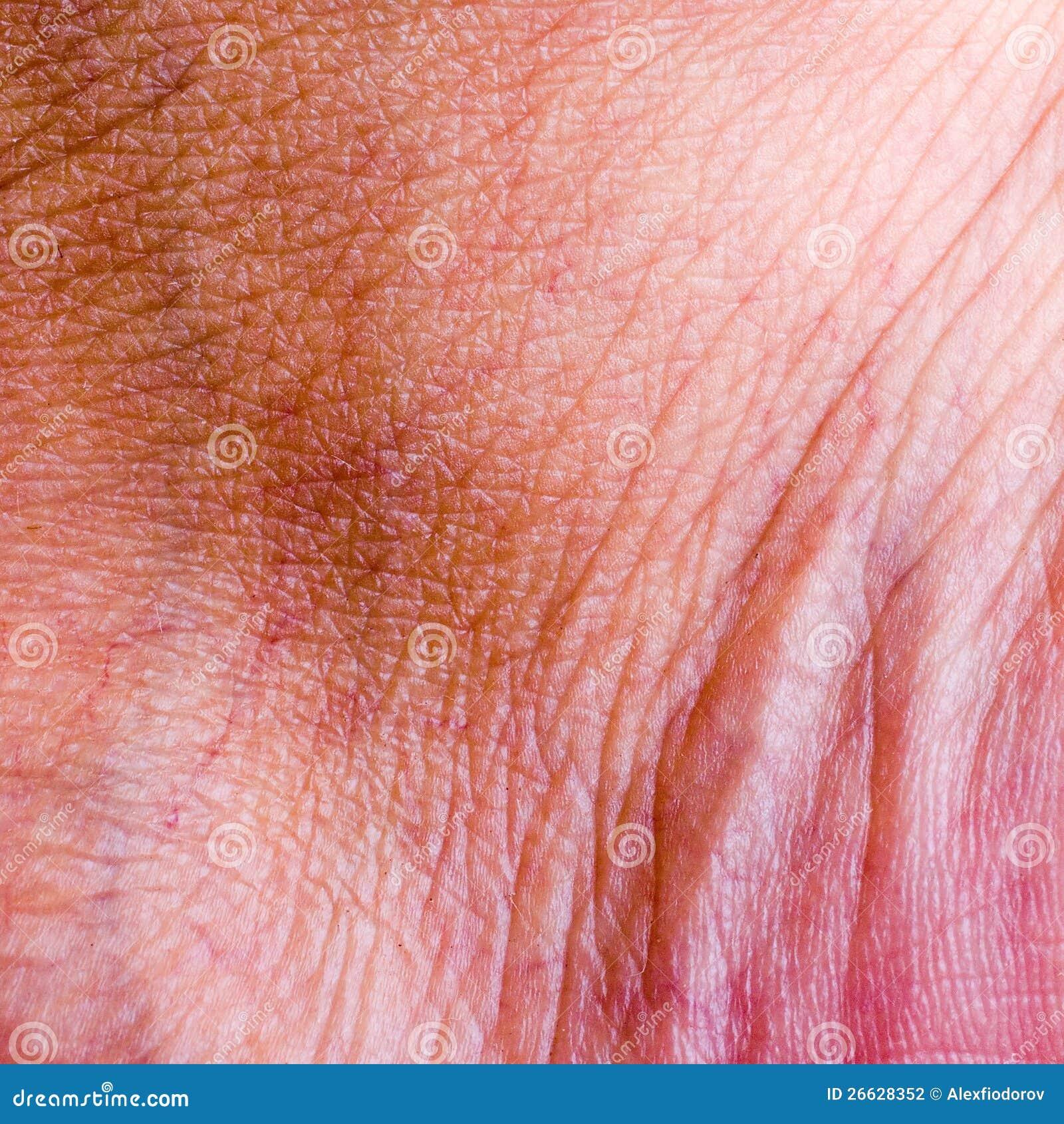 human skin background stock image image of melanoma 61054117 human skin closeup background stock photo image 26628352