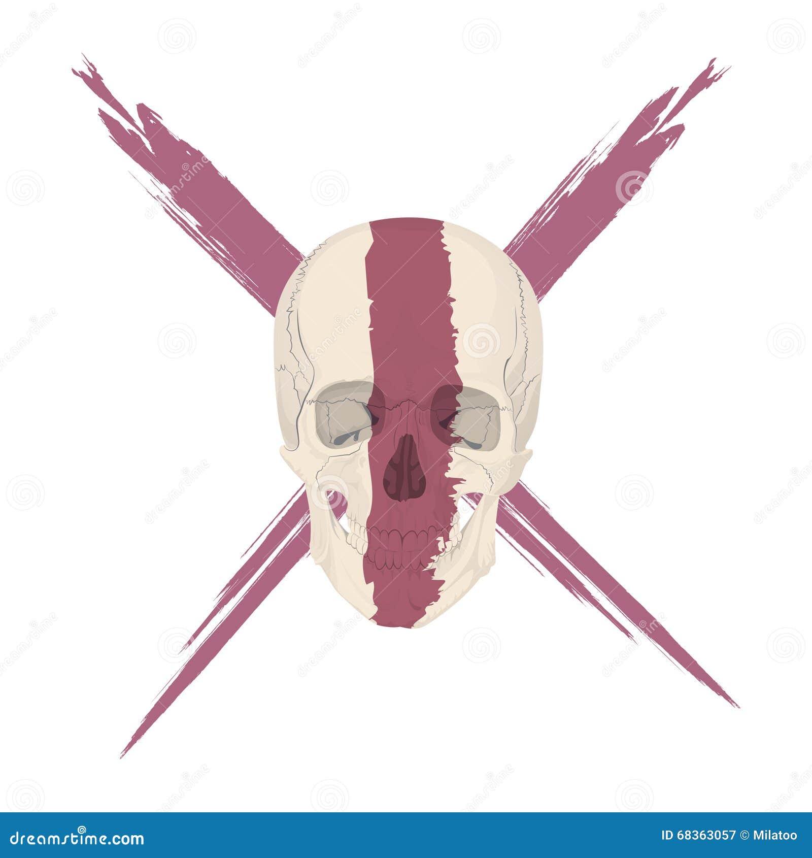 Human Skull Bones Skeleton Dead Stock Vector - Illustration of evil ...