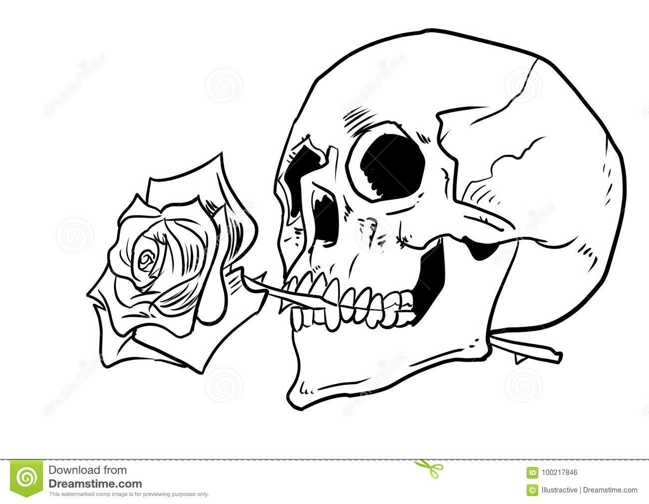 f38e0a35d6798 Human skull with a rose in mouth illustration, ink illustration for tattoo