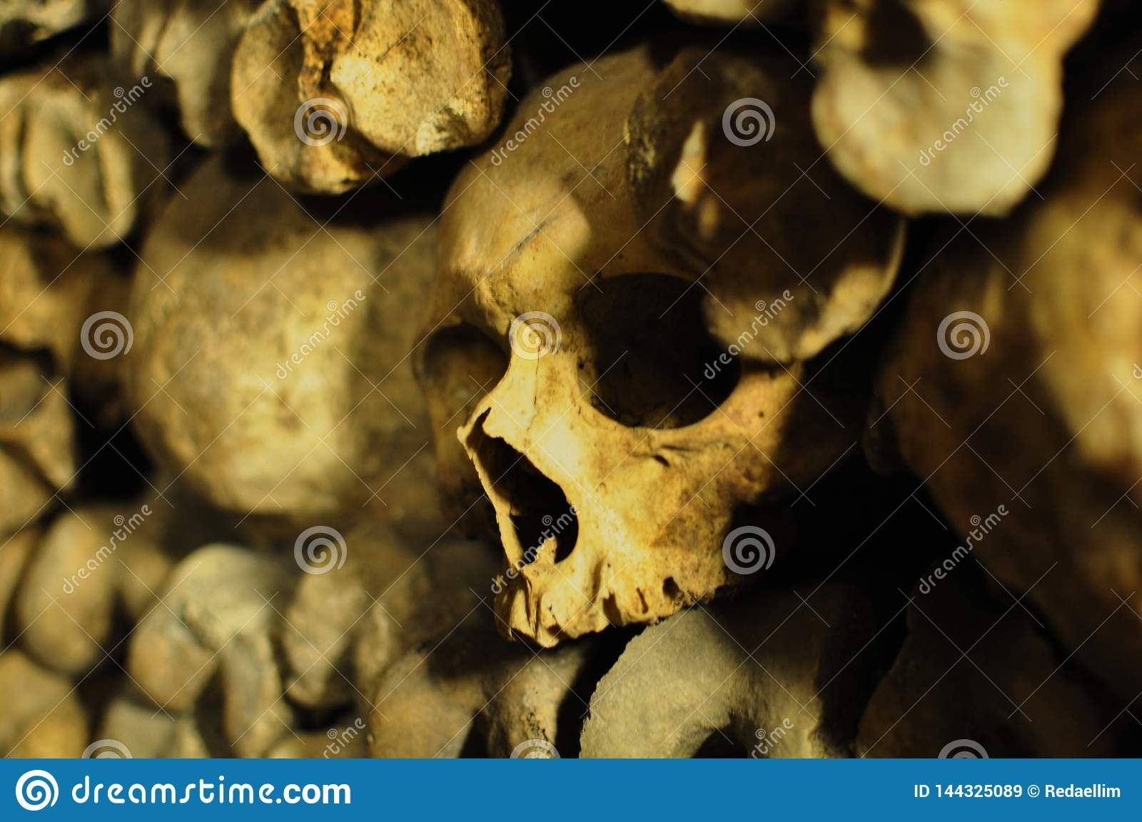 Human skulls in the catacombs of Paris, France