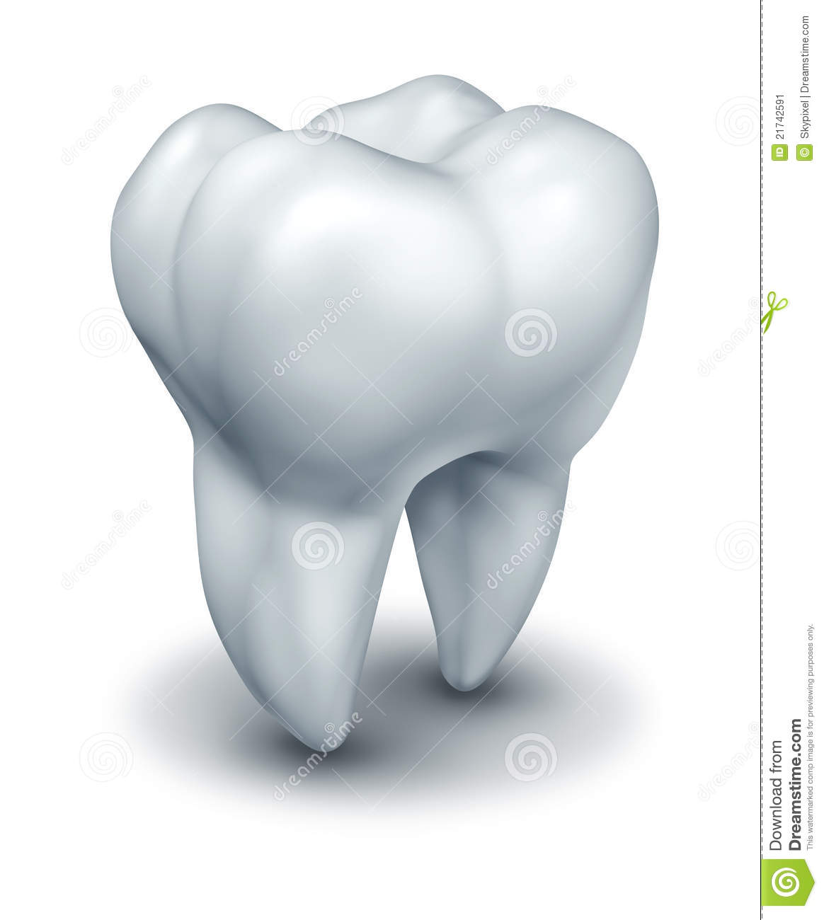Human tooth dental symbol representing dentist medicine and dentistry ...