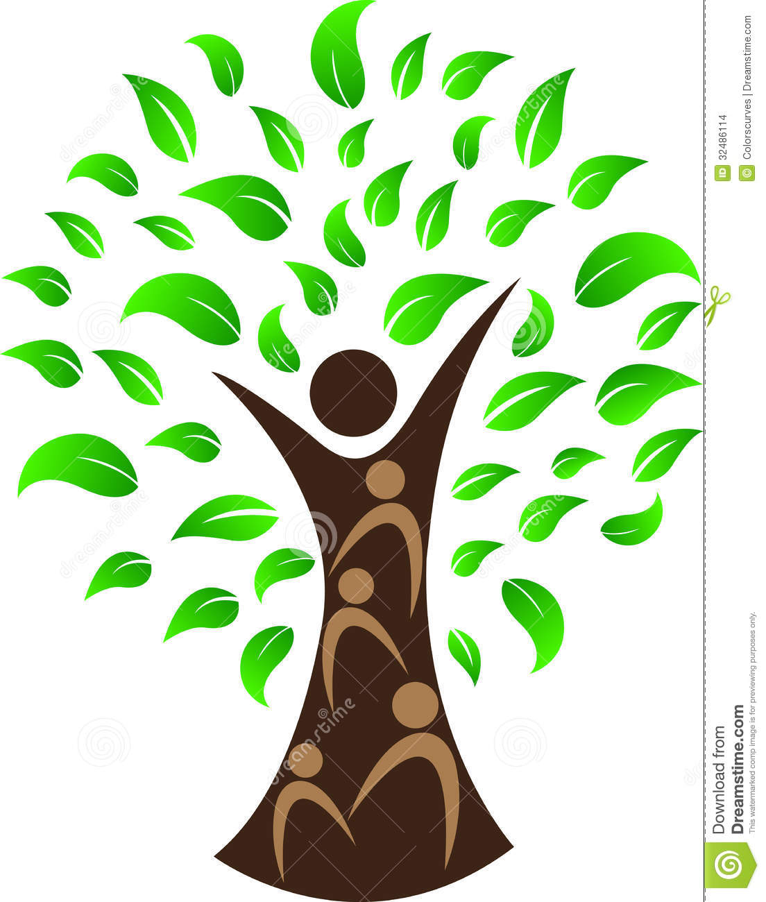 Human Tree Stock Images Image 32486114