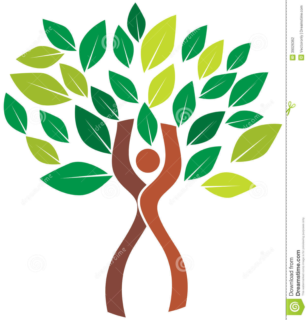 human tree Tree of life for personal growth trees provide many analogies to human development they are amazing microcosms of exchange and flow of water, nutrients and.