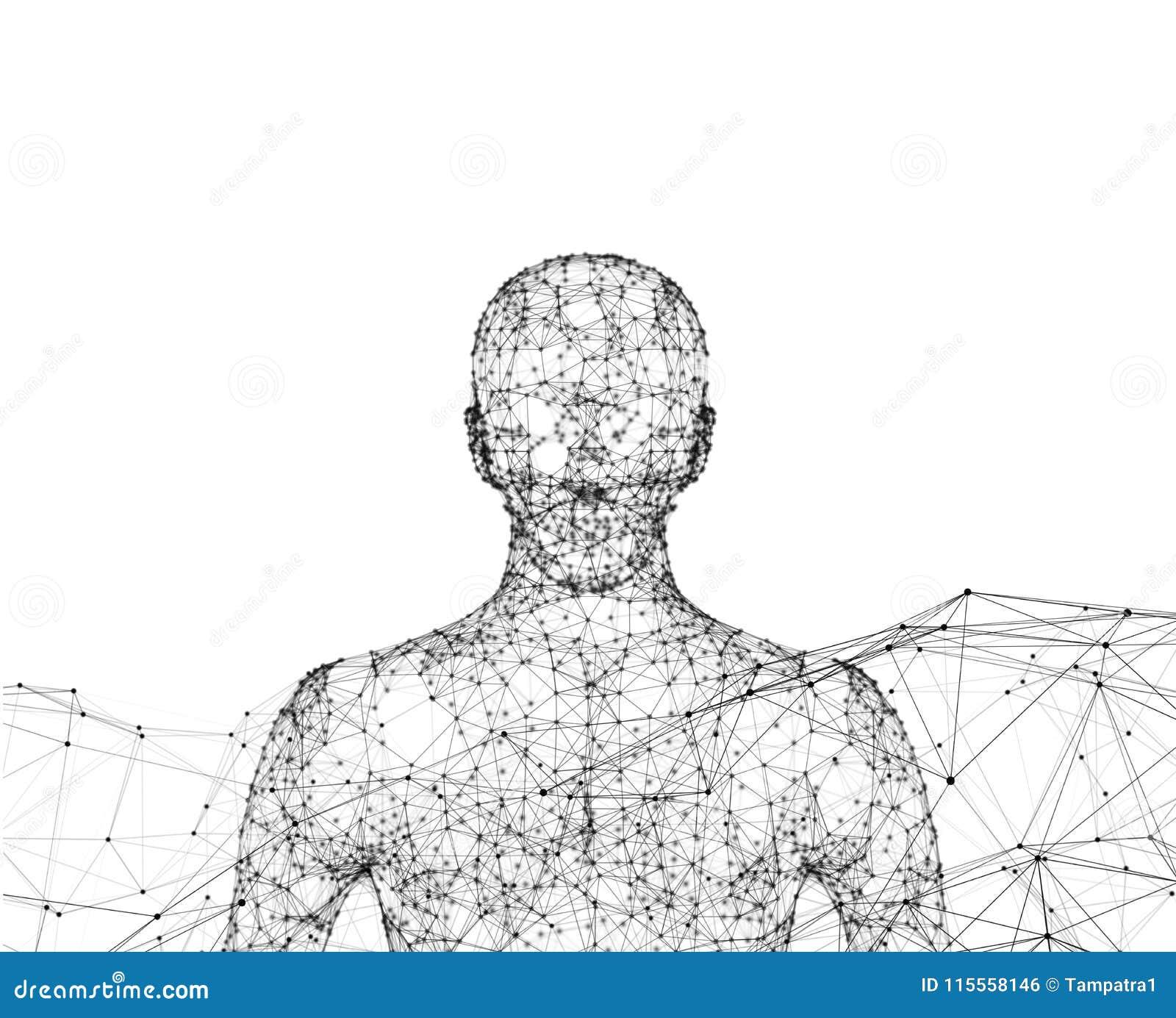 Humano O modelo de Wireframe com conexão alinha no fundo branco