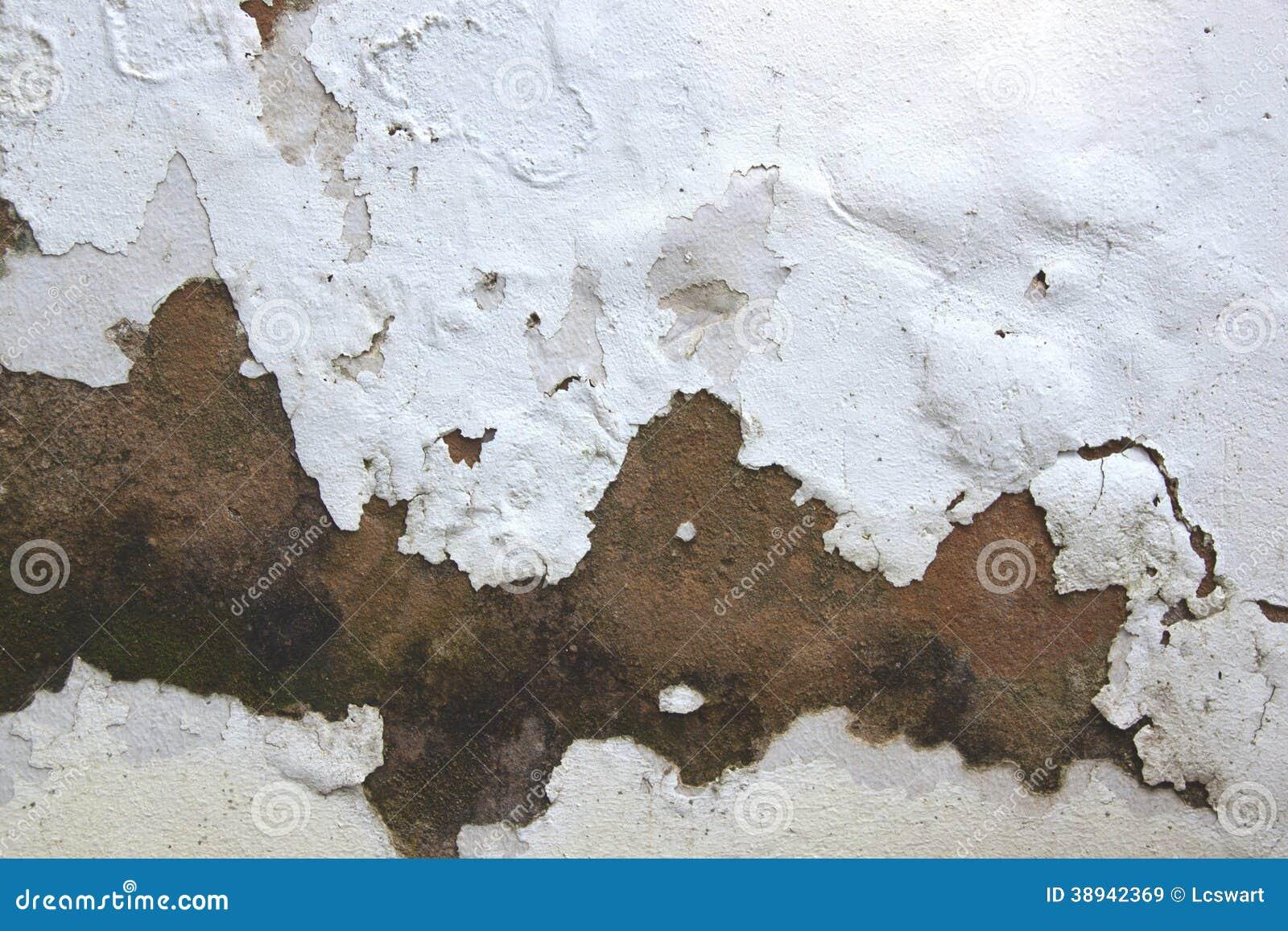 Humidit en hausse et pluchage de la peinture sur le mur ext rieur photo sto - Peinture mur exterieur pliolite ...
