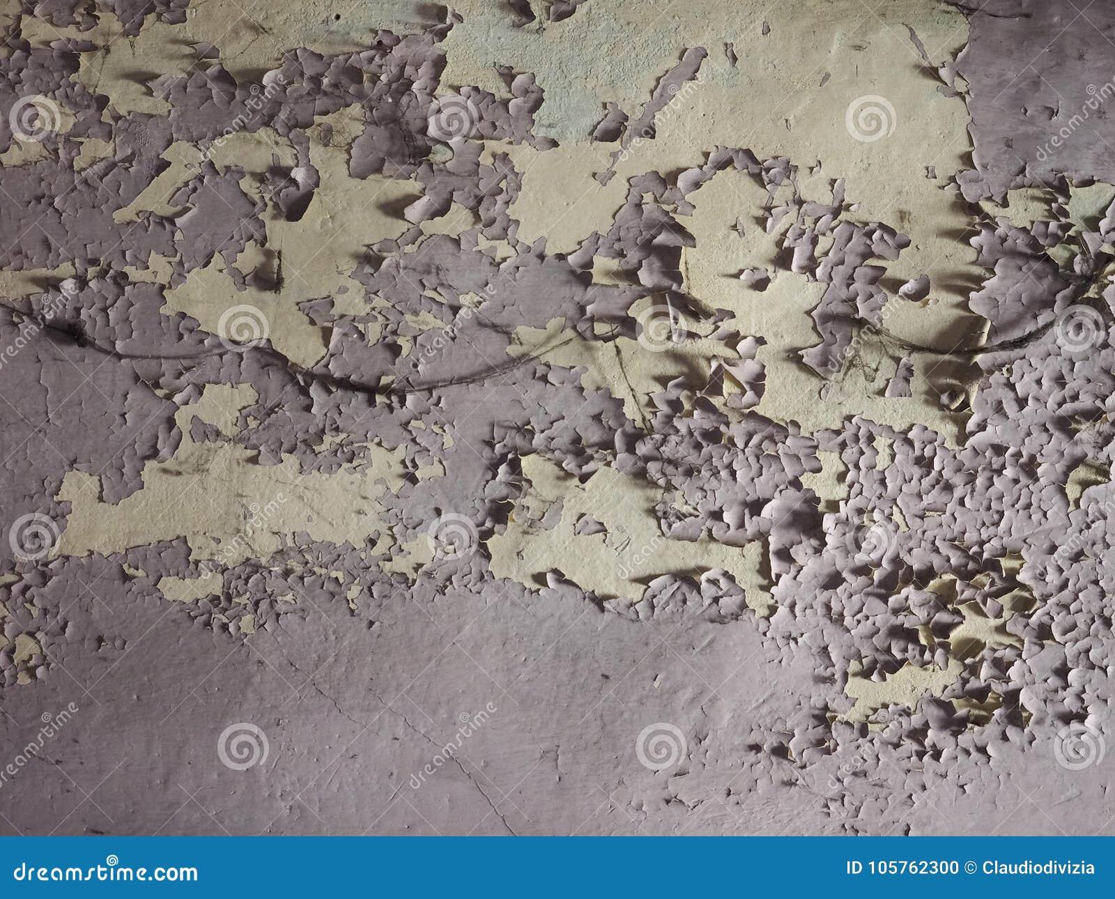 Humidité humide sur le mur