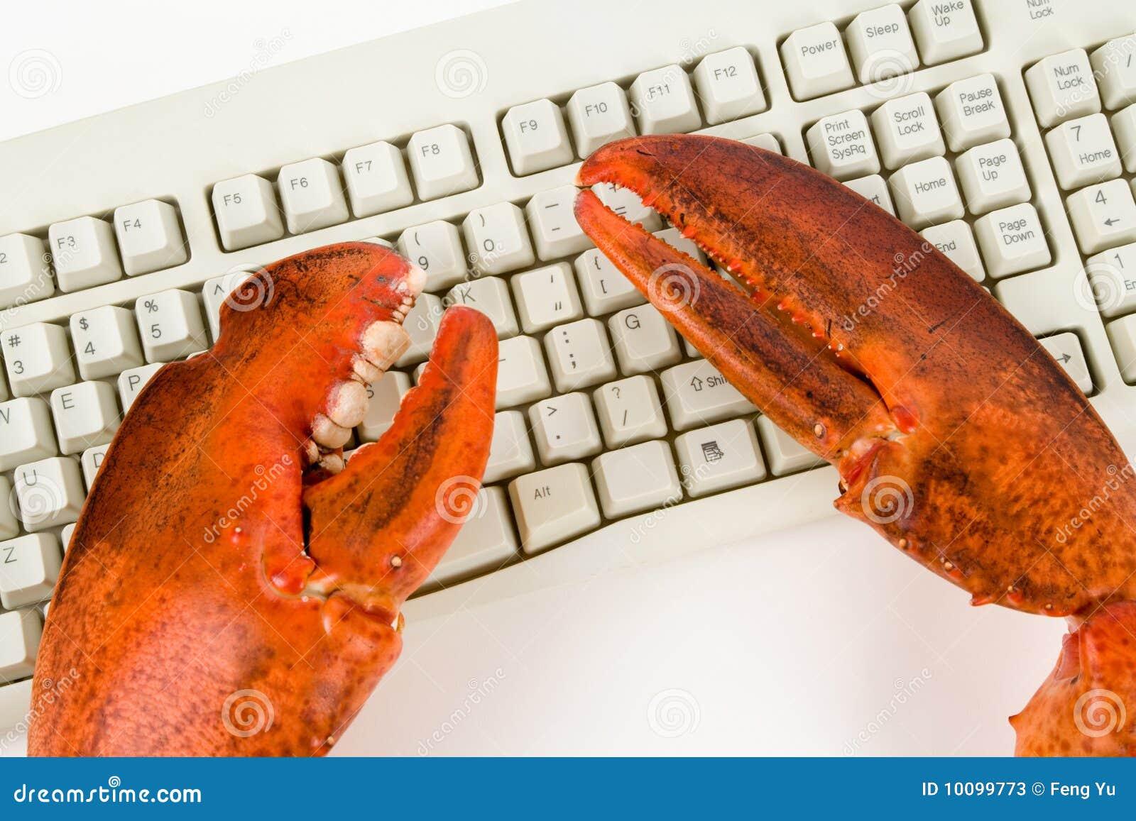 Hummer Greifer Und Computer Tastatur Stockbild Bild Von Aktivität