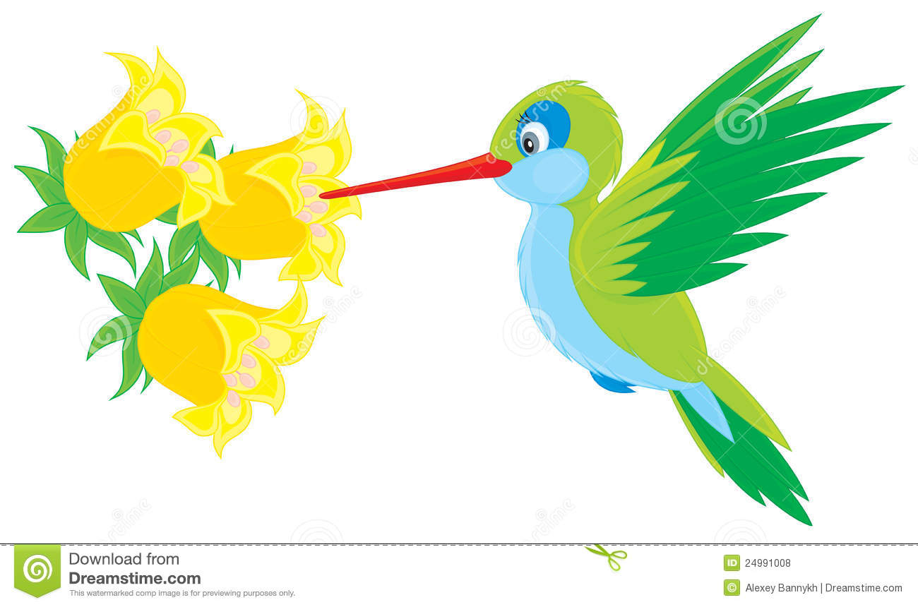 Vector clip-art illustration of a humming-bird humming over a tropical ...
