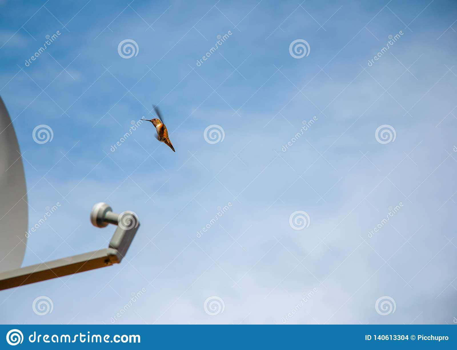 Hummingbird antena satelitarna