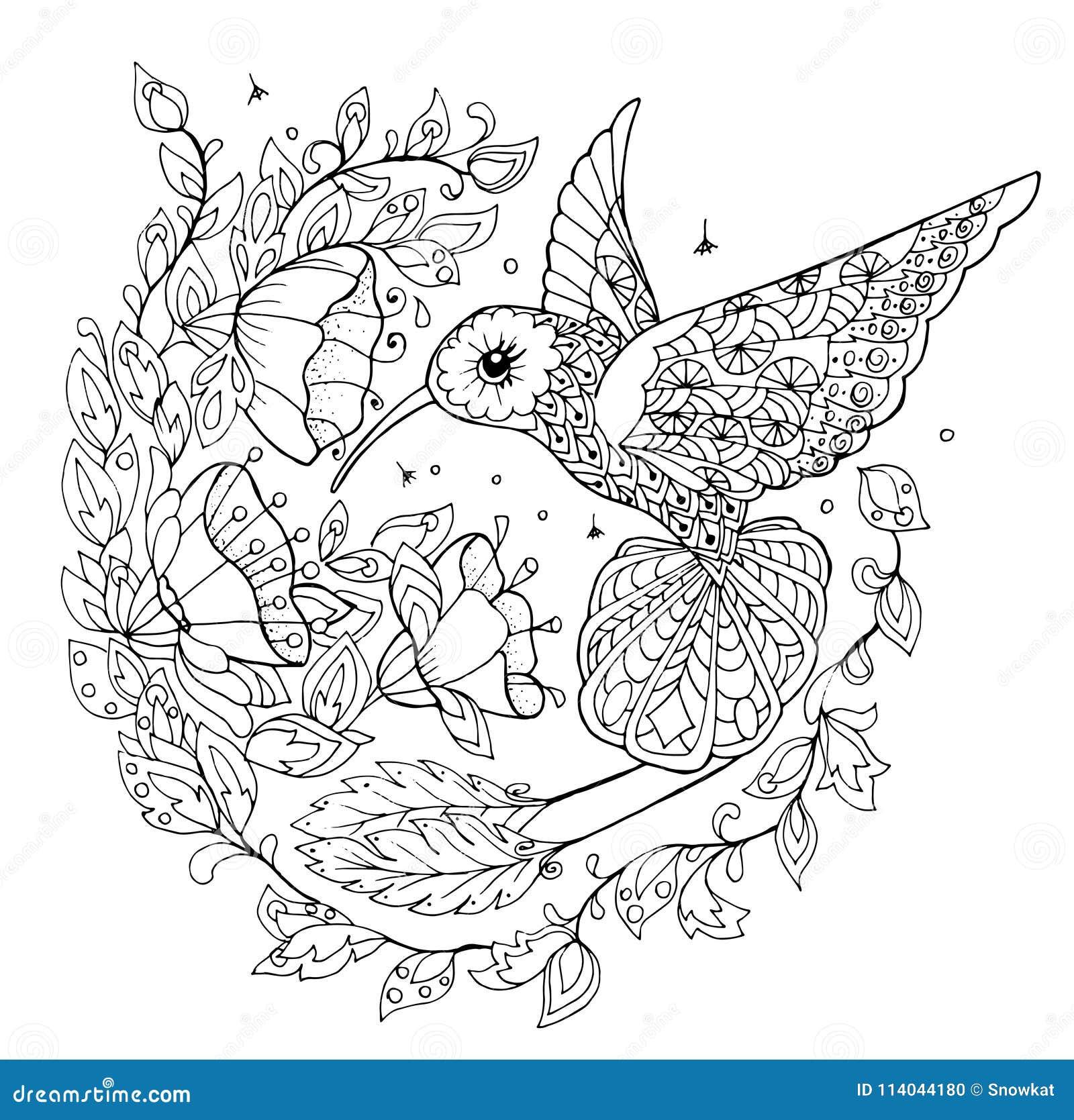 Hummingbird coloring book stock vector. Illustration of ...