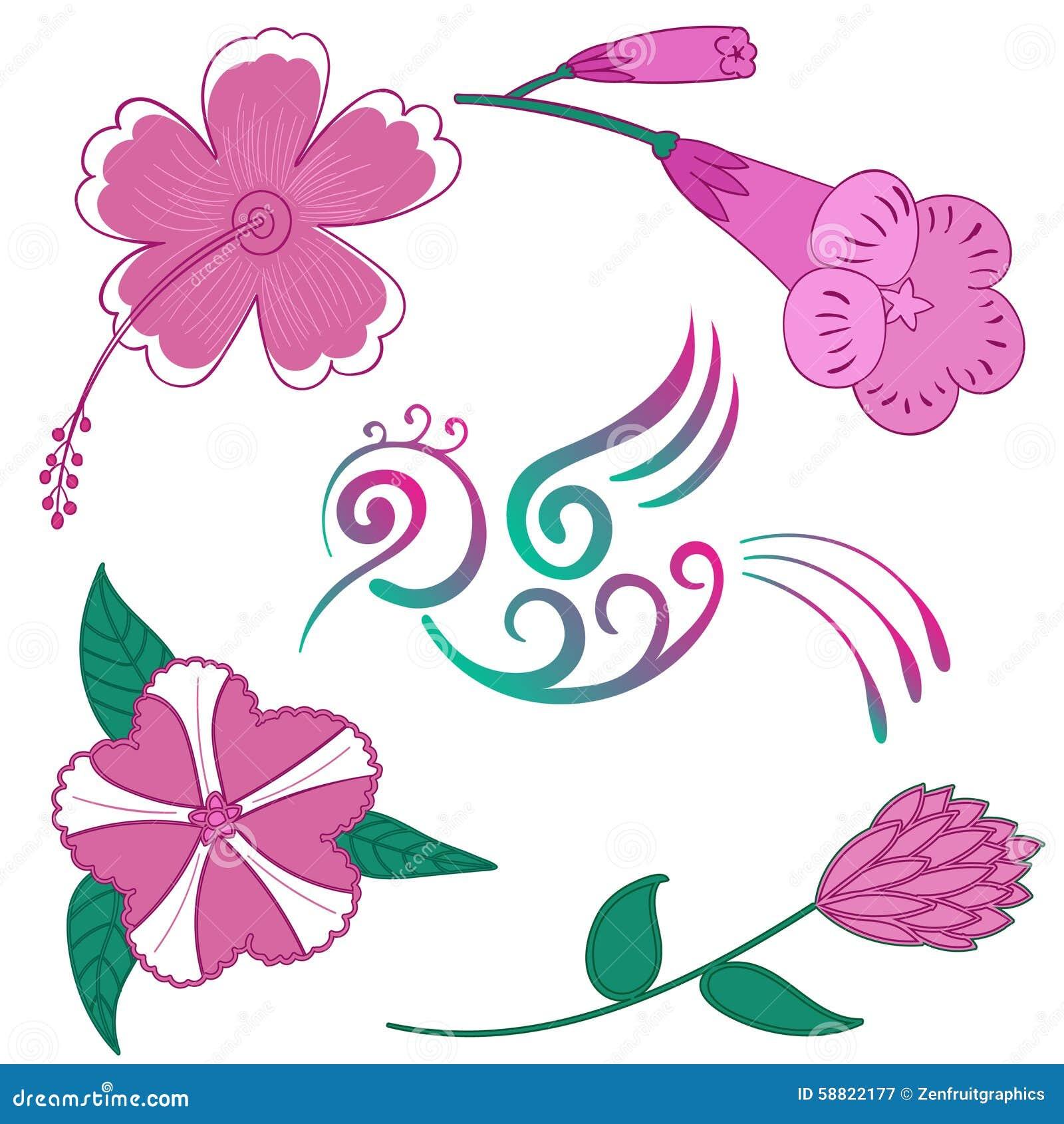 Hummingbird Flower Vector Exotic Flowers And Bird Hibiscus Flower
