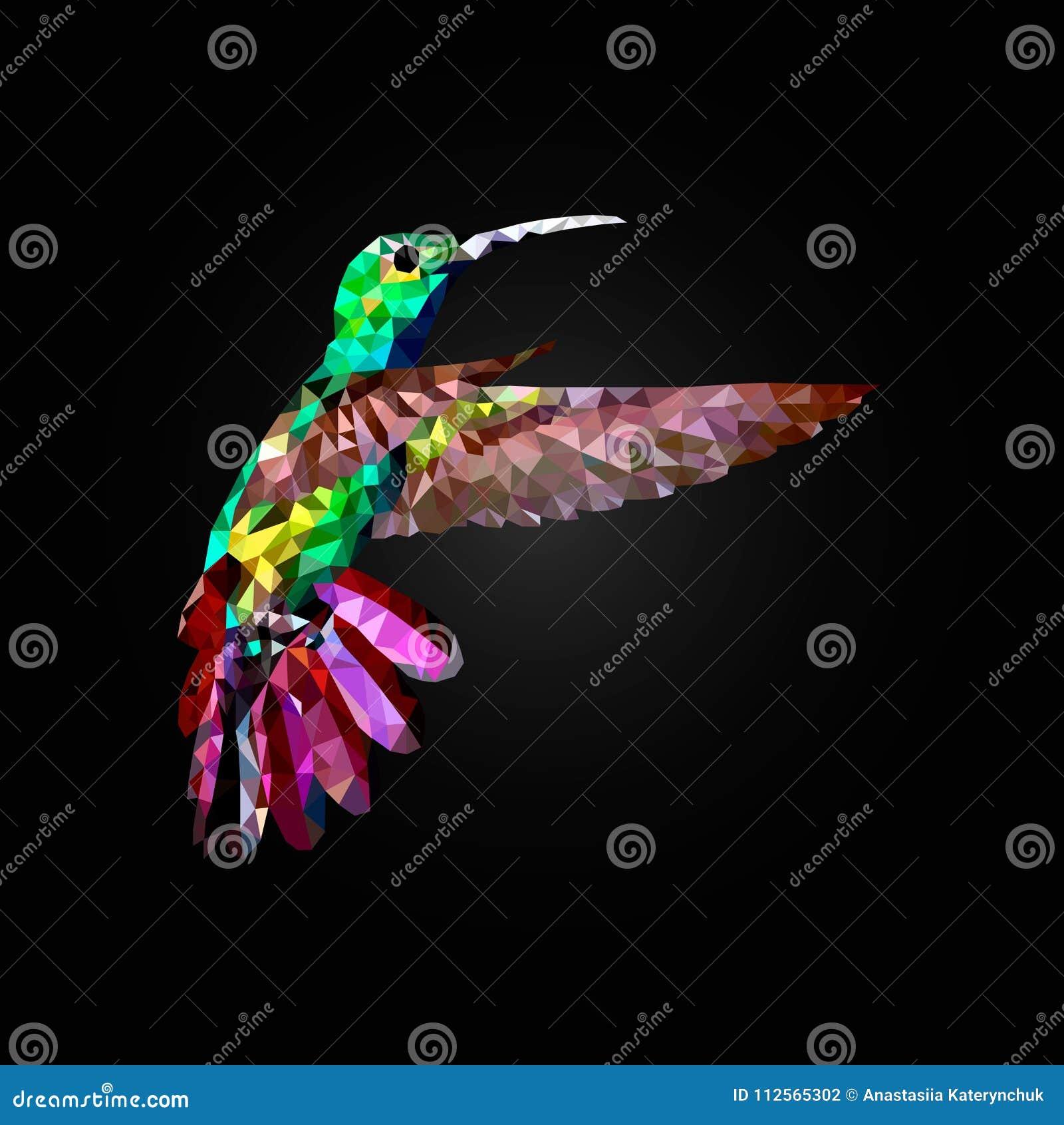 Hummingbird komarnica, wektorowy wielobok na czarnym blackground