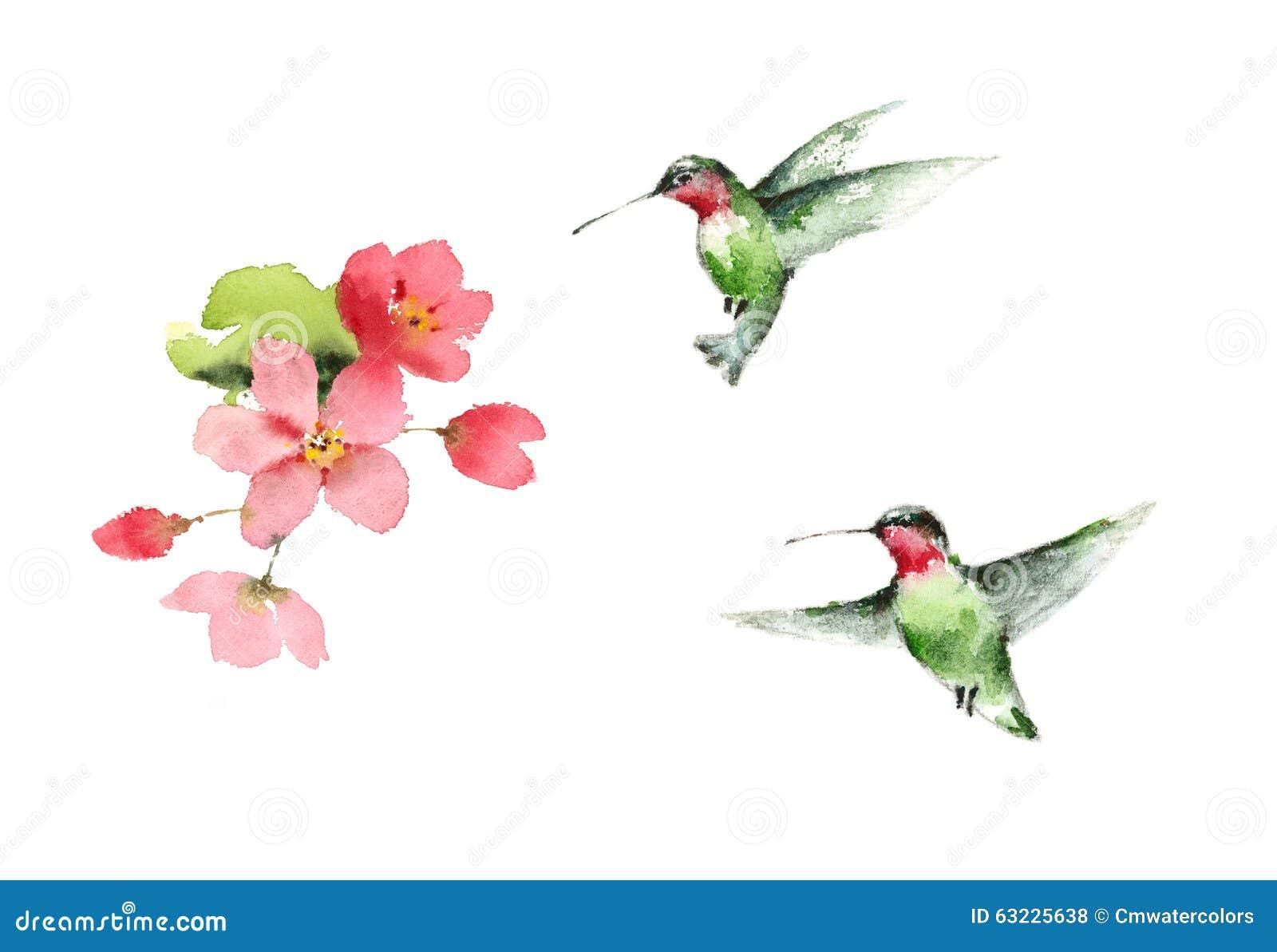 Hummingbirds Flying Around Flowers Watercolor Bird