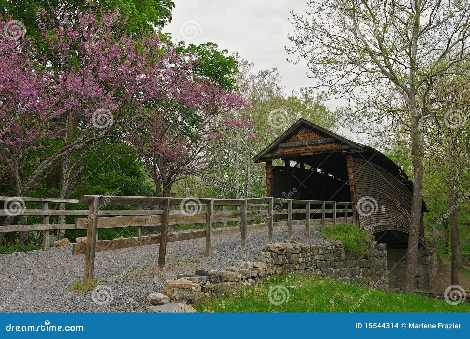 Humpback Bridge in Covington, Virginia.