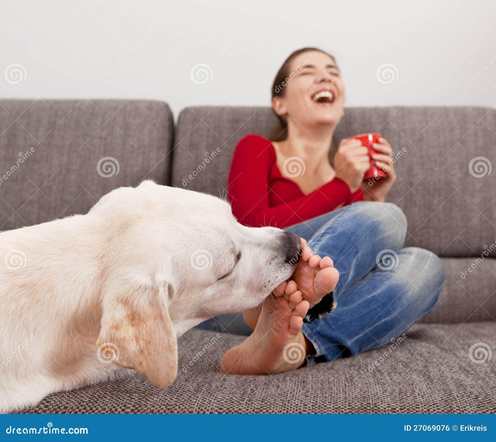 Dog Lick Video
