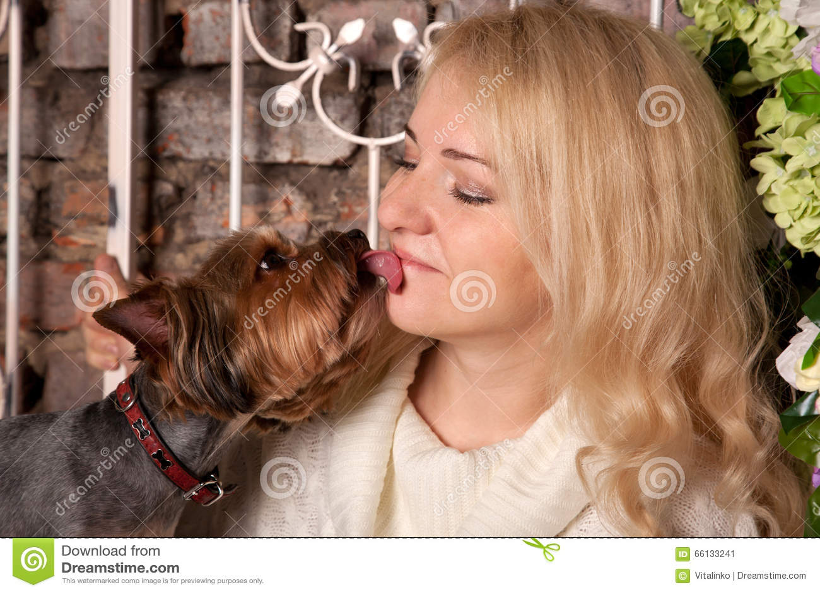 themen bericht frau hund
