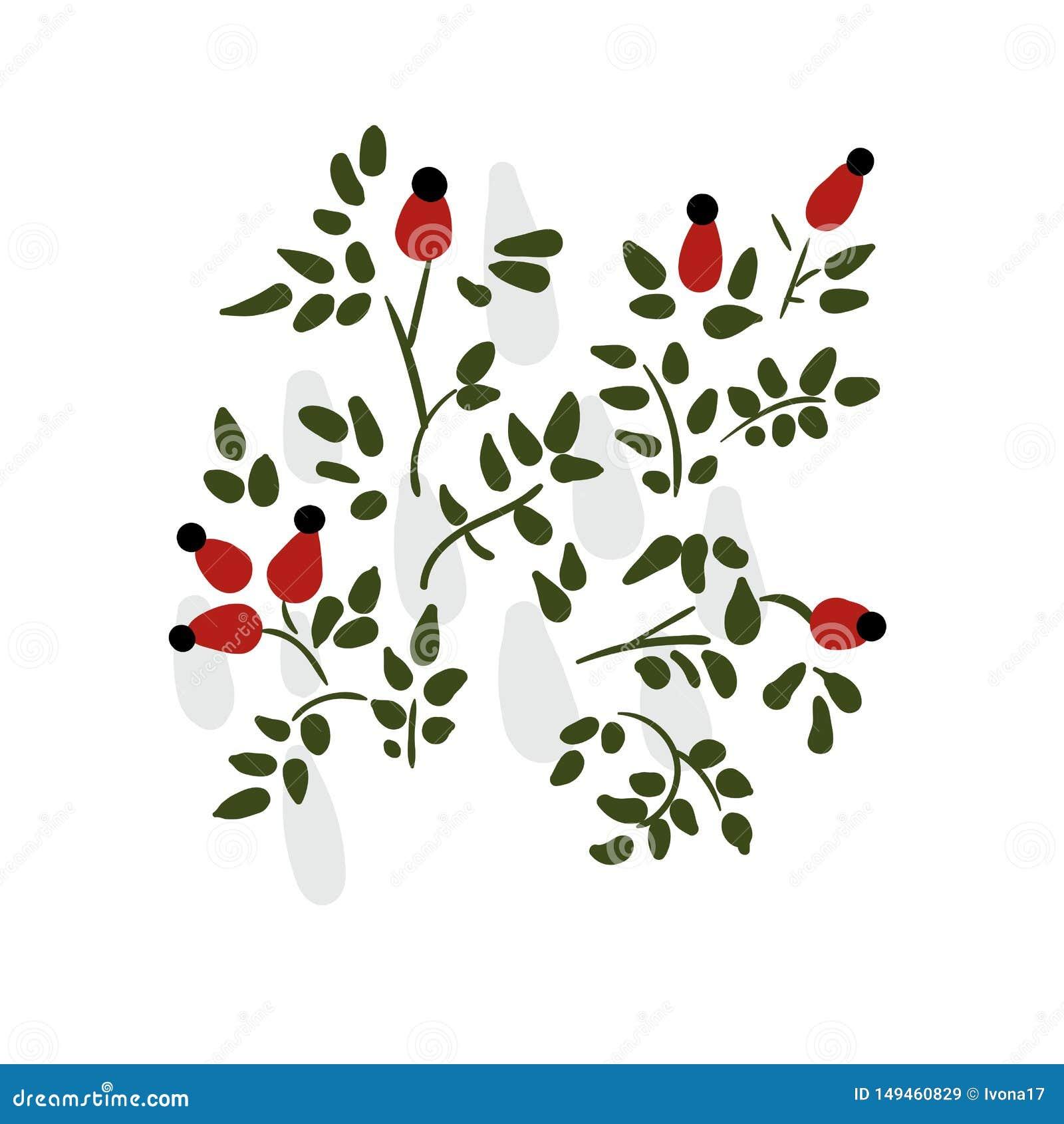 Hund stieg ursprünglicher Skandinavier des Blumenkartenvektorblumenmuster-Elements