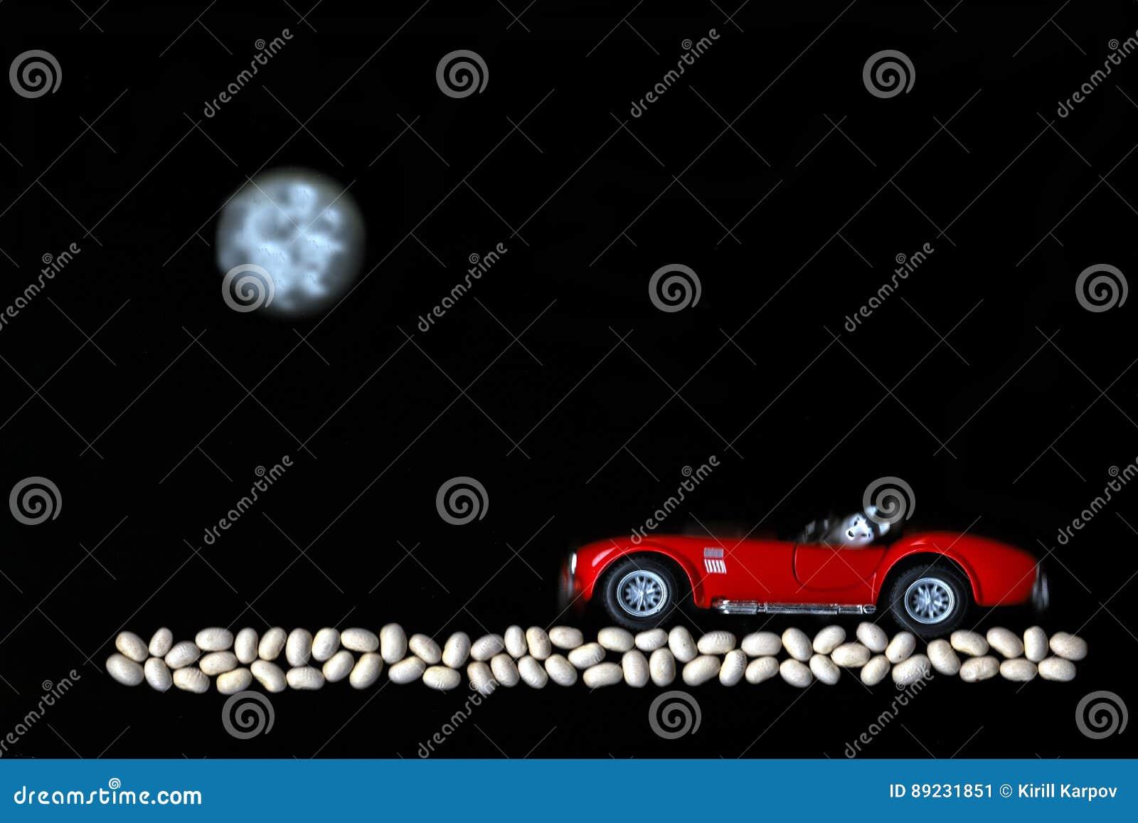 Hunden rider på den röda bilen med månen på grus