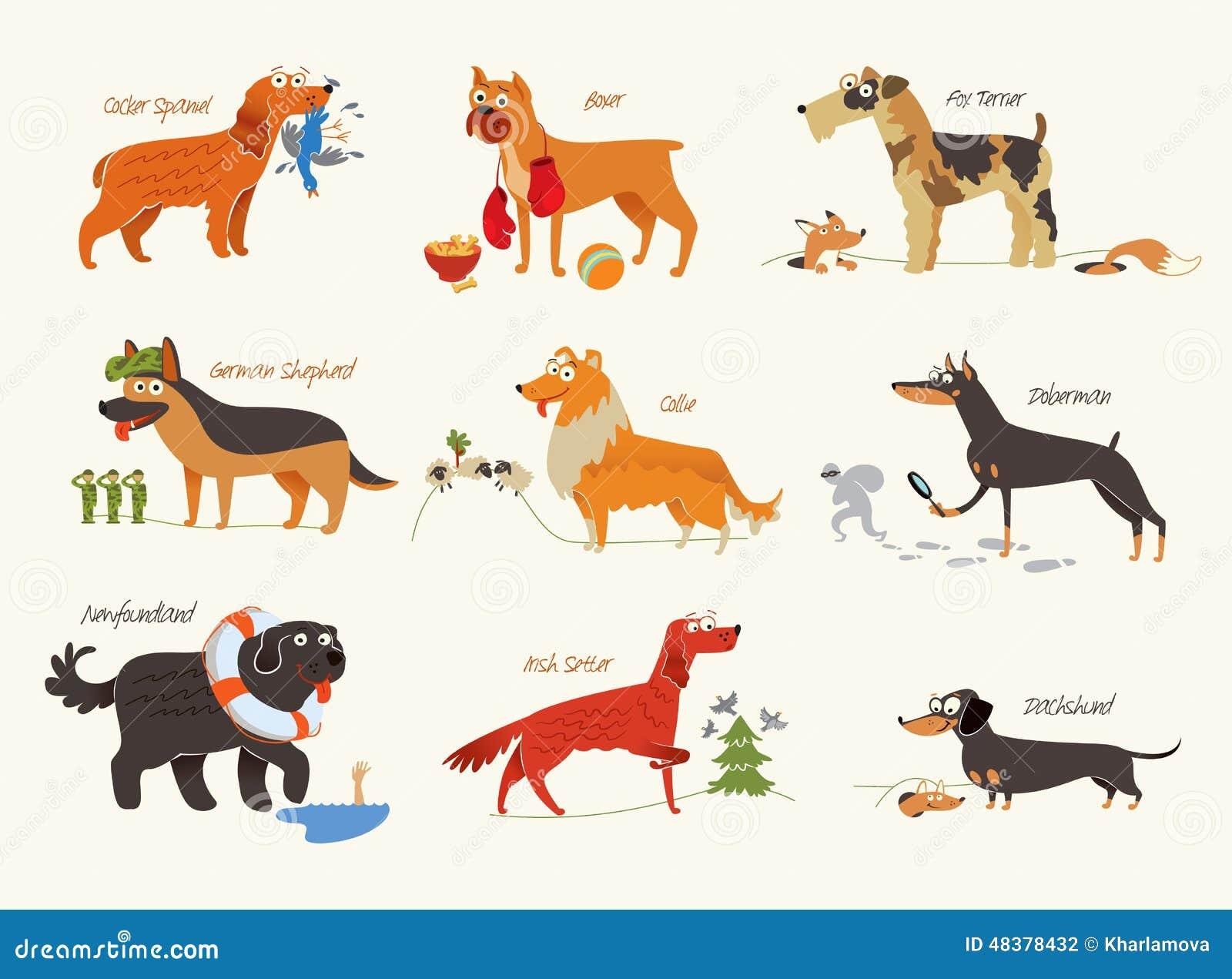 Dibujo De Rottweiler Para Colorear Dibujos Para Colorear