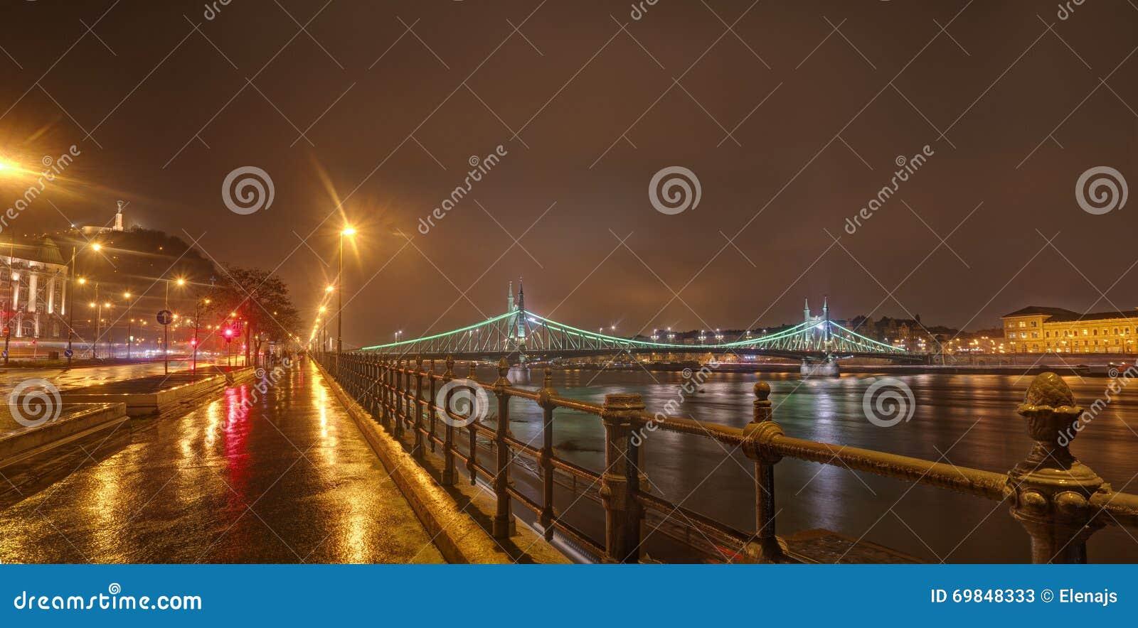 Hungary, Budapest, Liberty Bridge - night picture