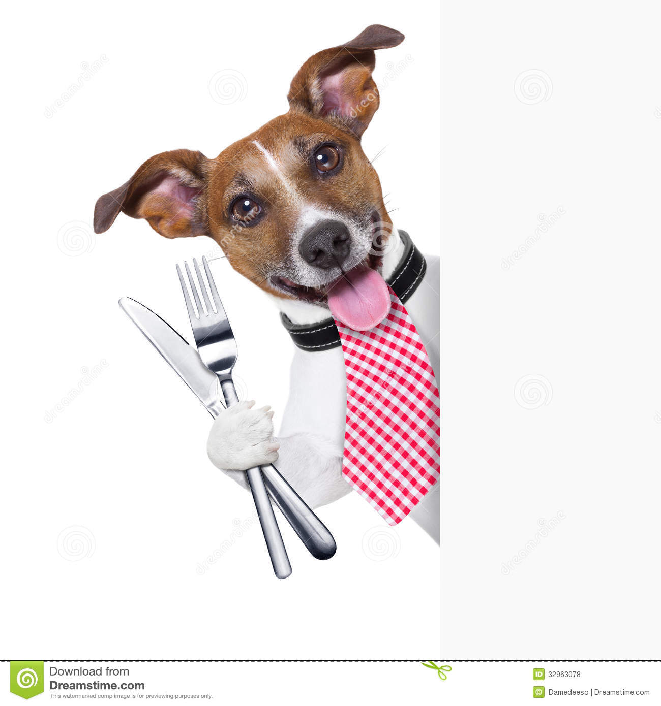 Hungry Dog Royalty Free Stock Photos - Image: 32963078
